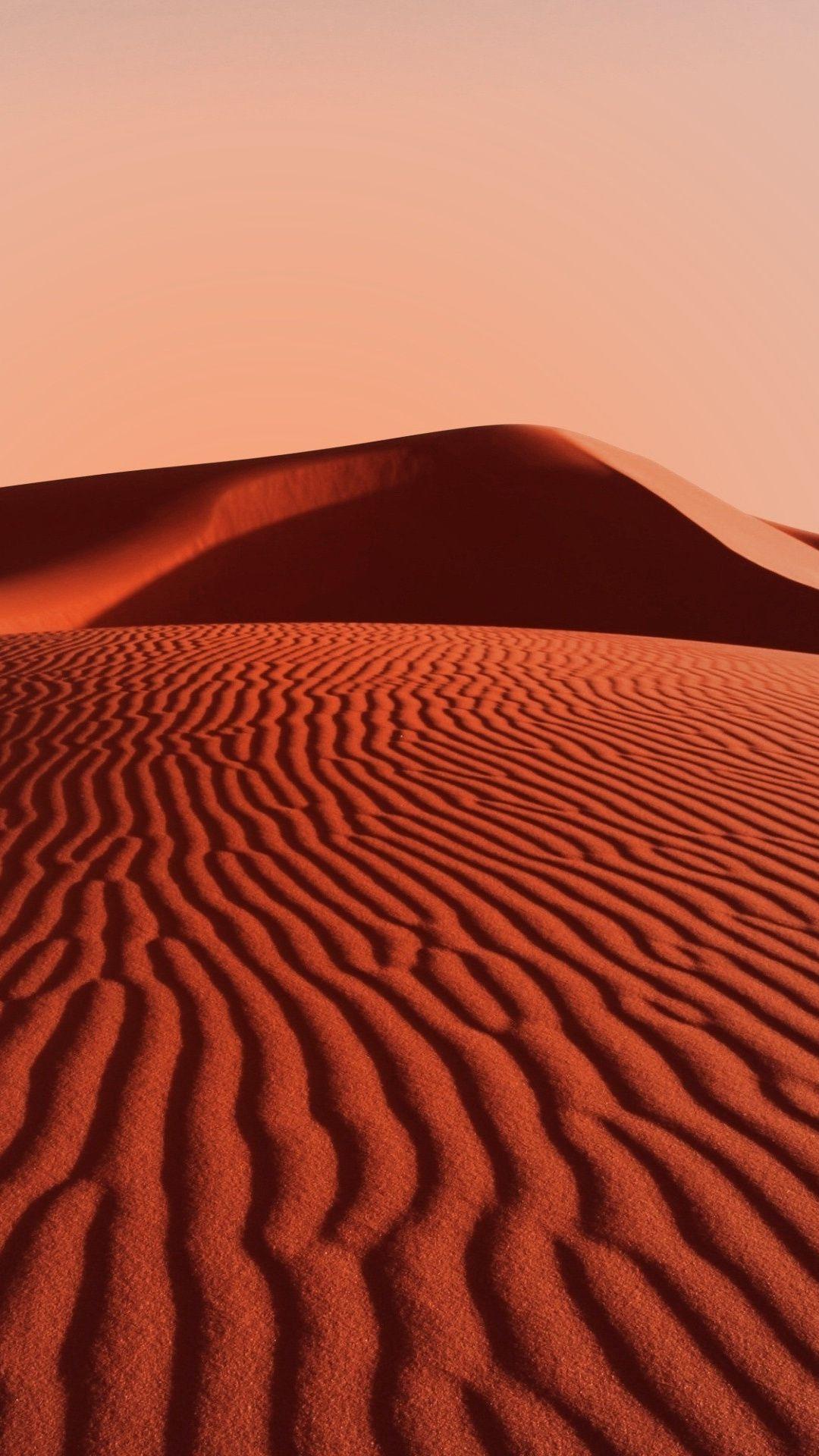 Desert Wallpaper