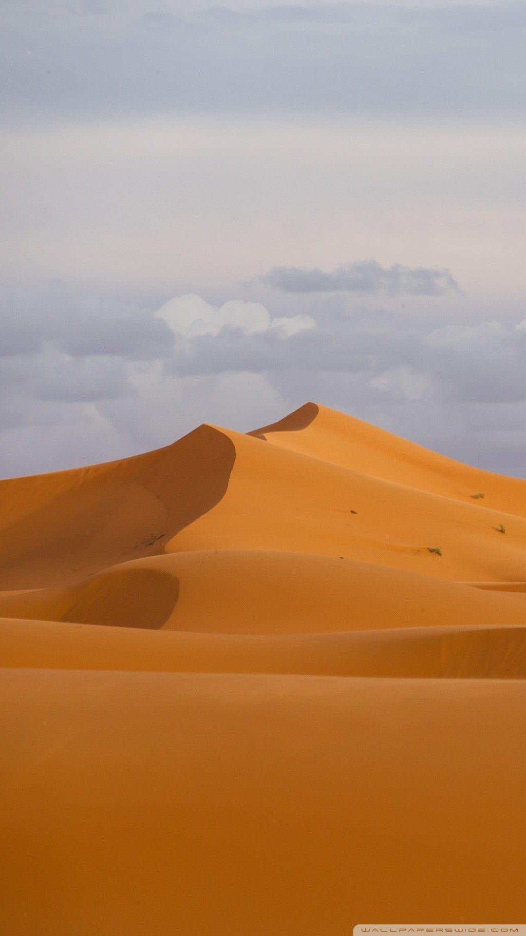 Desert Dunes Pictures