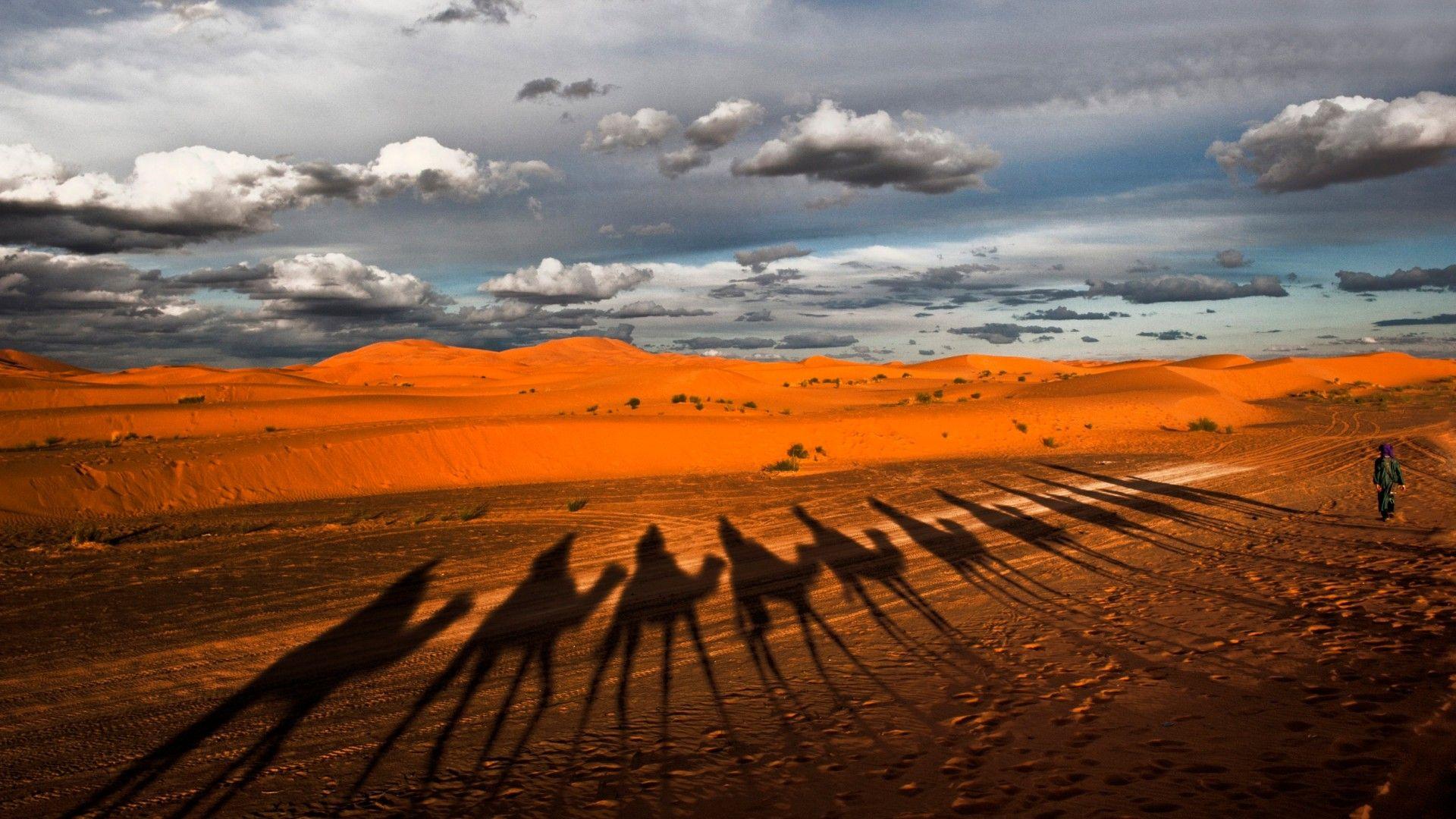 Desert Hd Photo