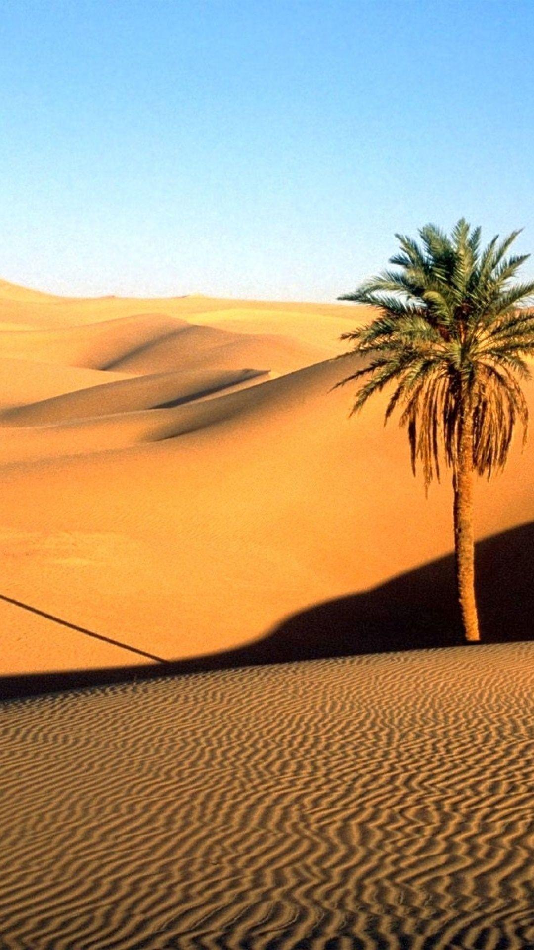 Desert Pictures Vertical