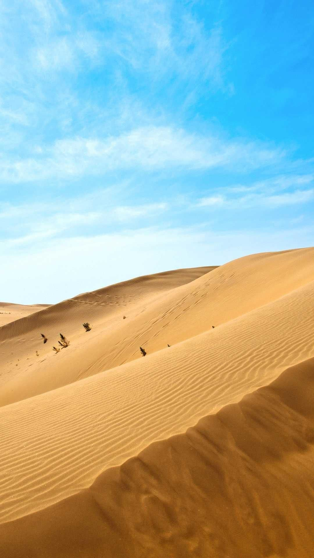 Dunes Of White Sand