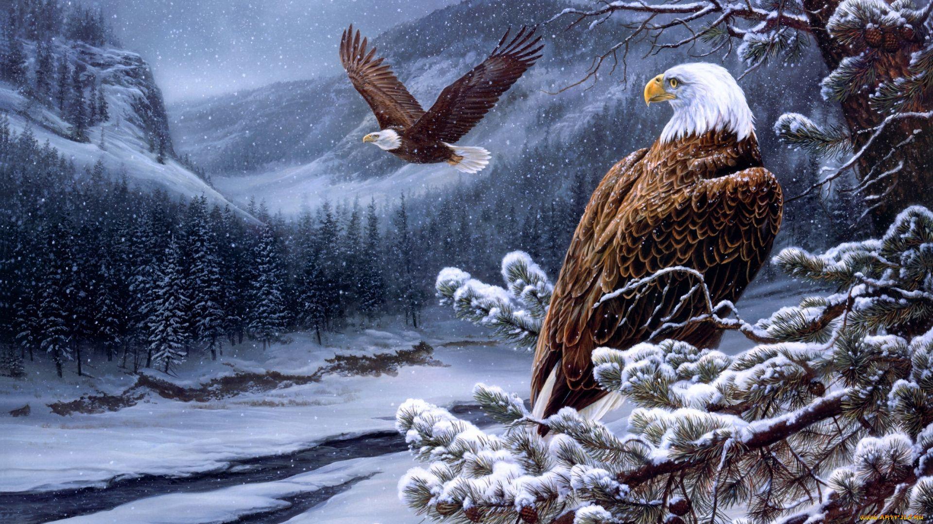 Eagle In Winter Wallpaper