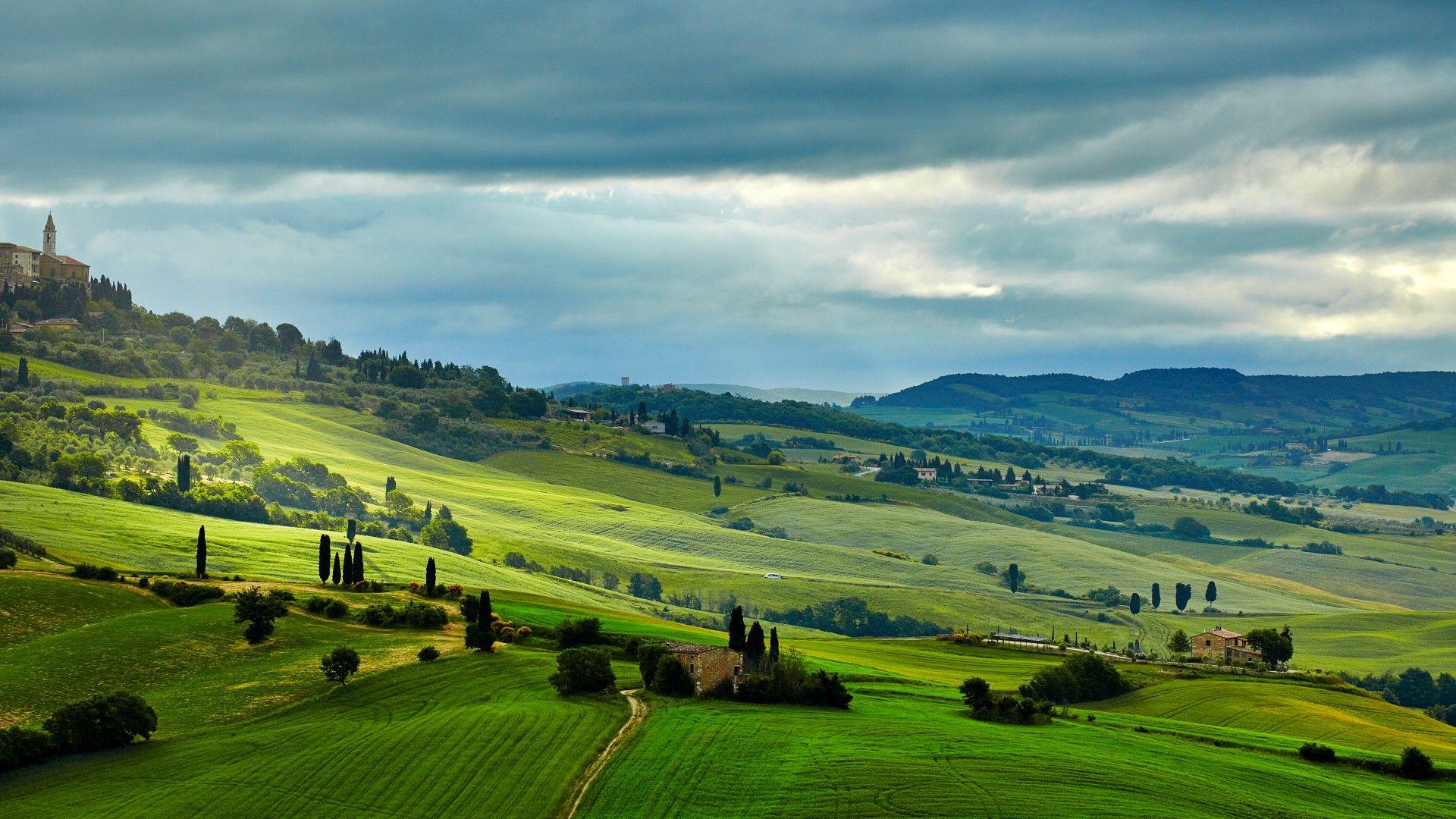 Field Italy Tuscany