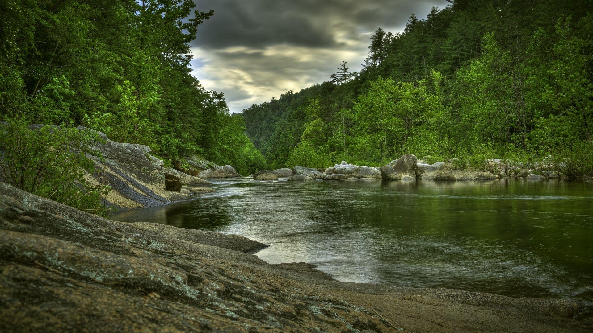 Forest River Hd