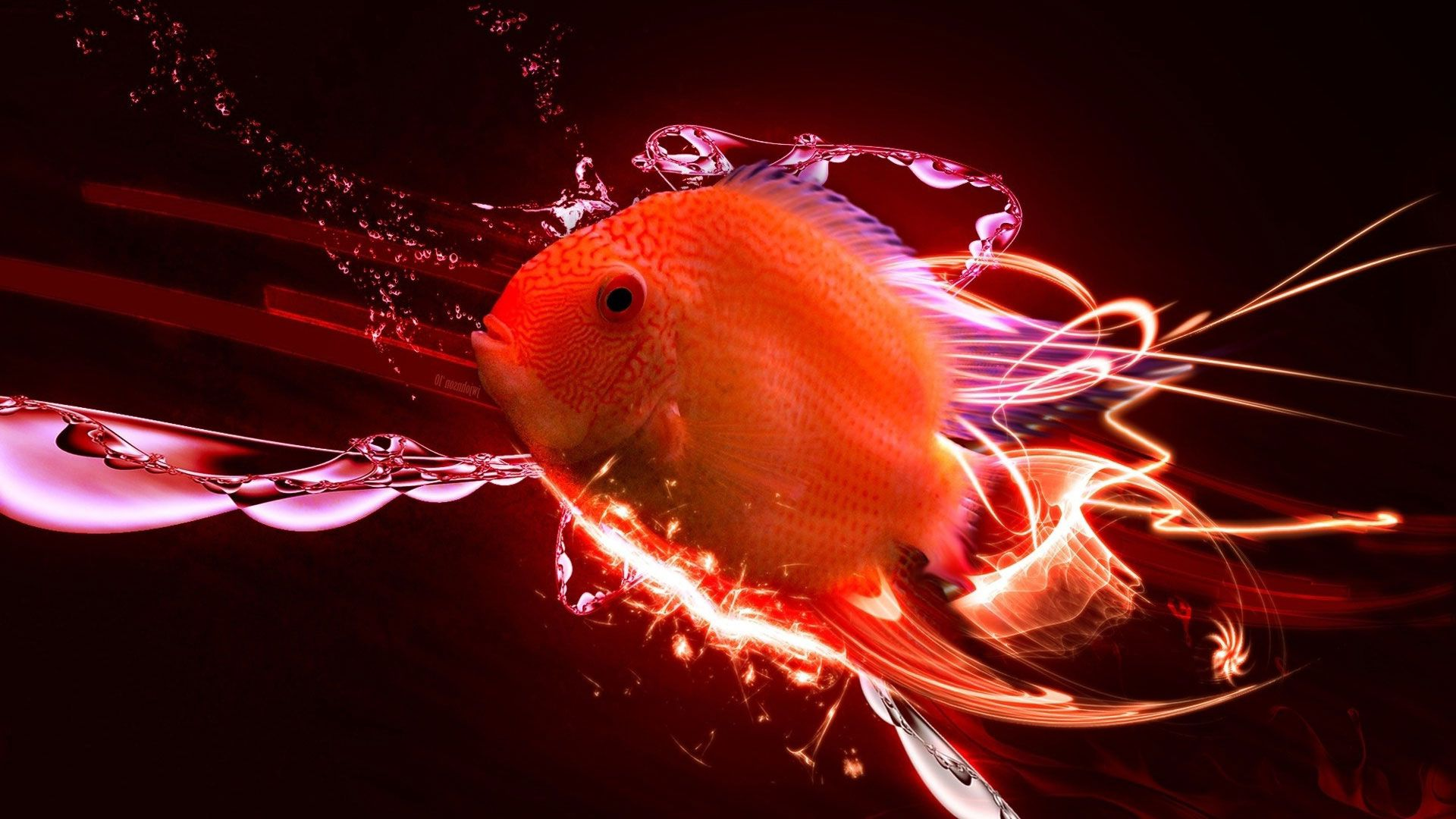Goldfish Abstraction