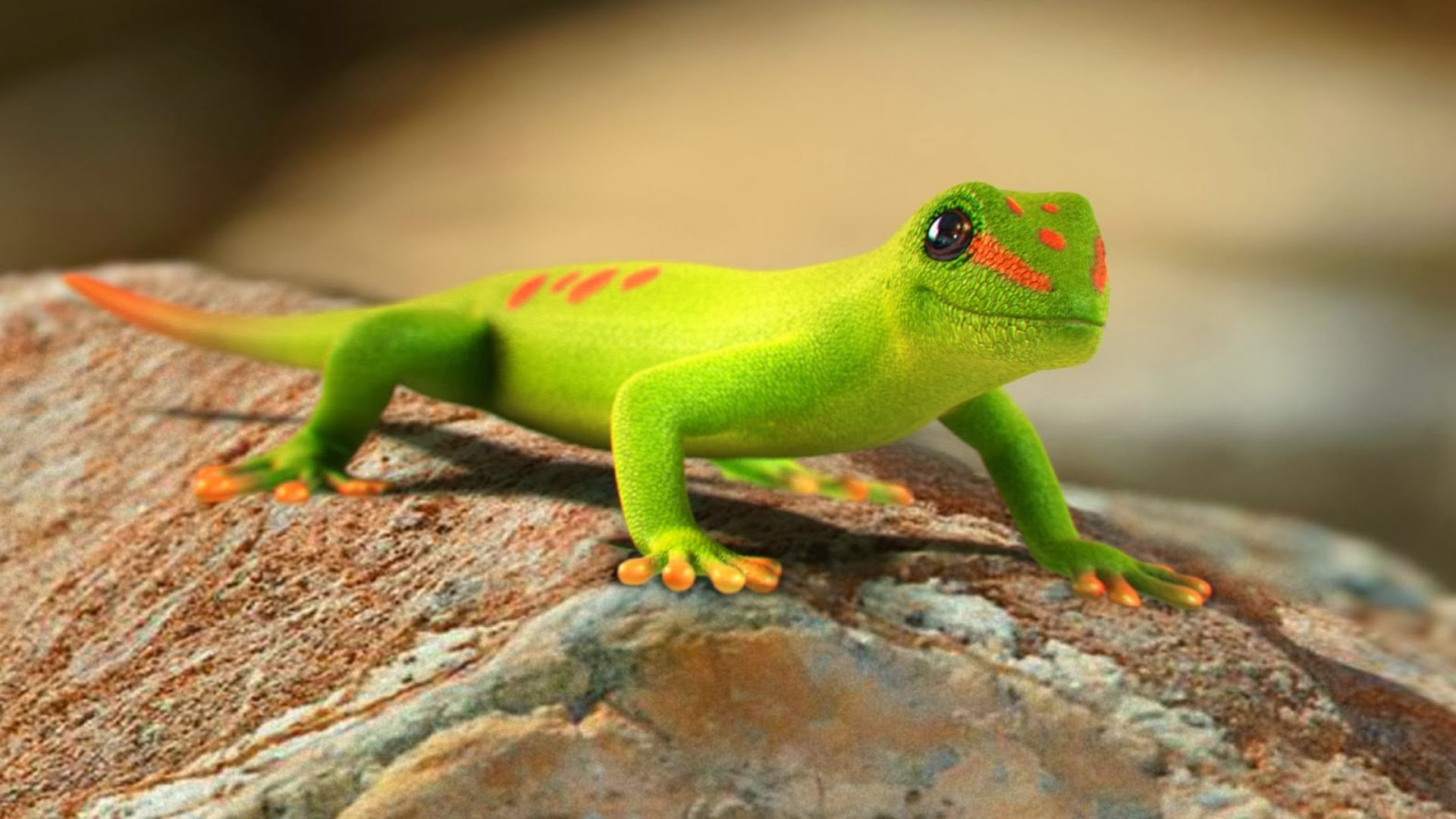 Green Gecko Phelsuma