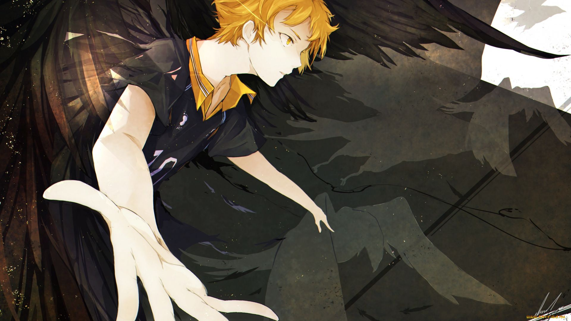 Hinata Shouyou Crow