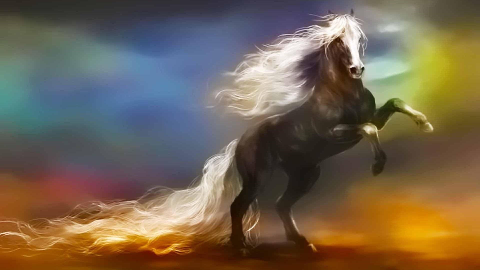 Horse Fantasy Wallpaper