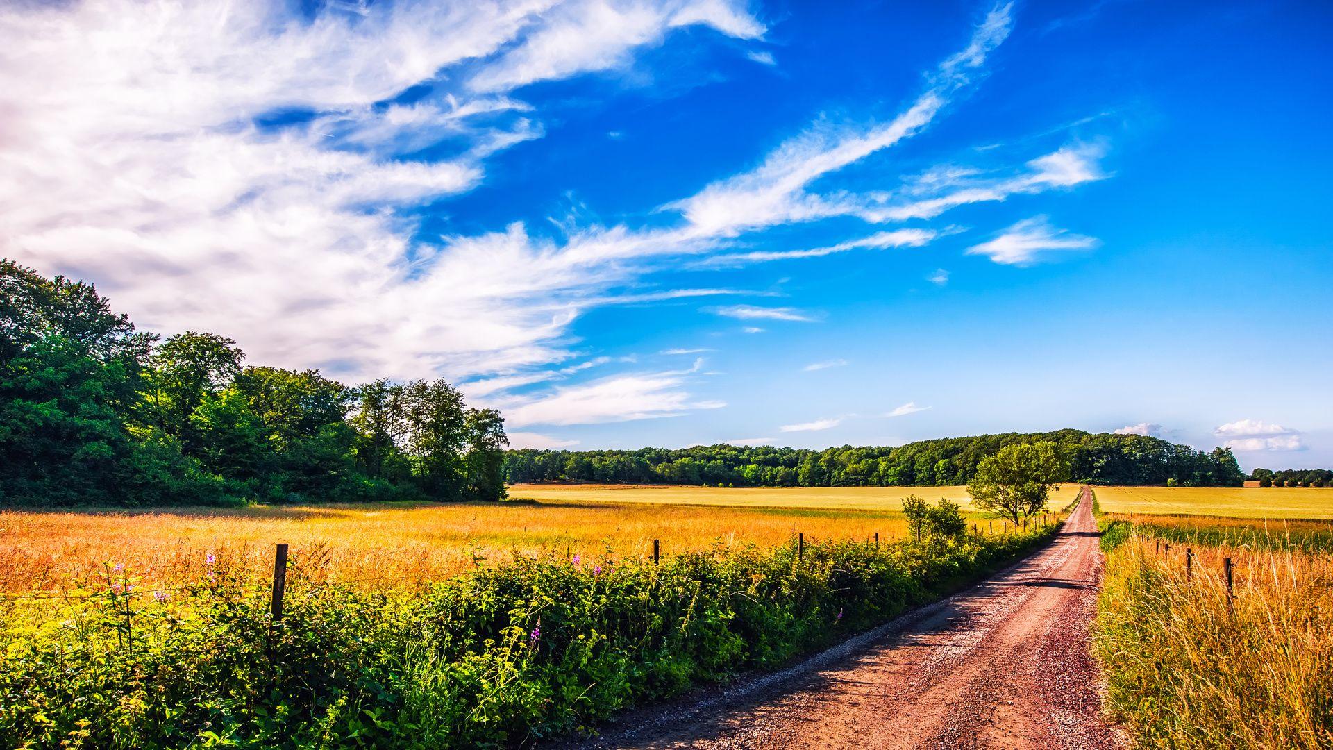 Landscape Summer Pictures