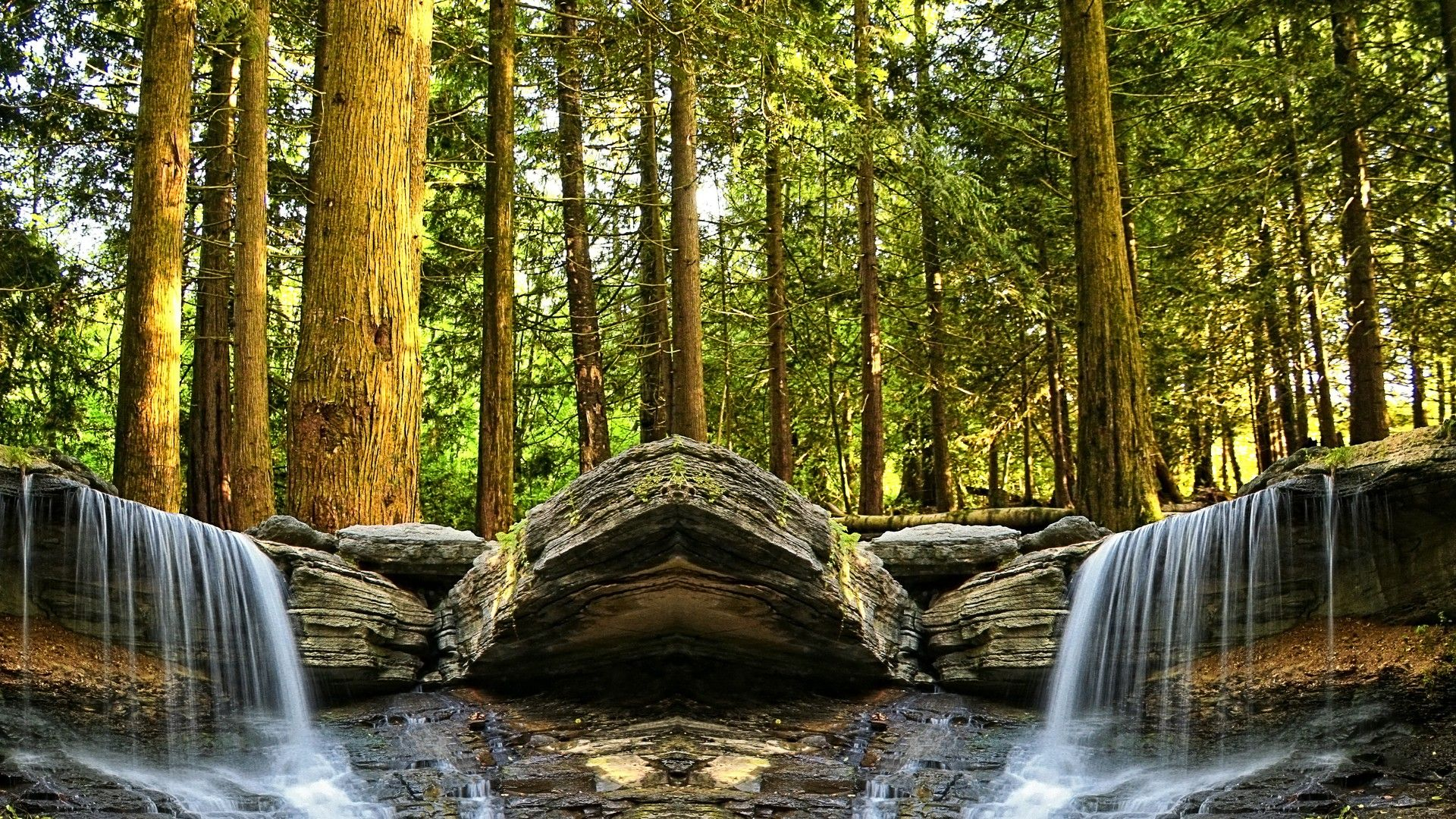 Nature Forest Waterfall
