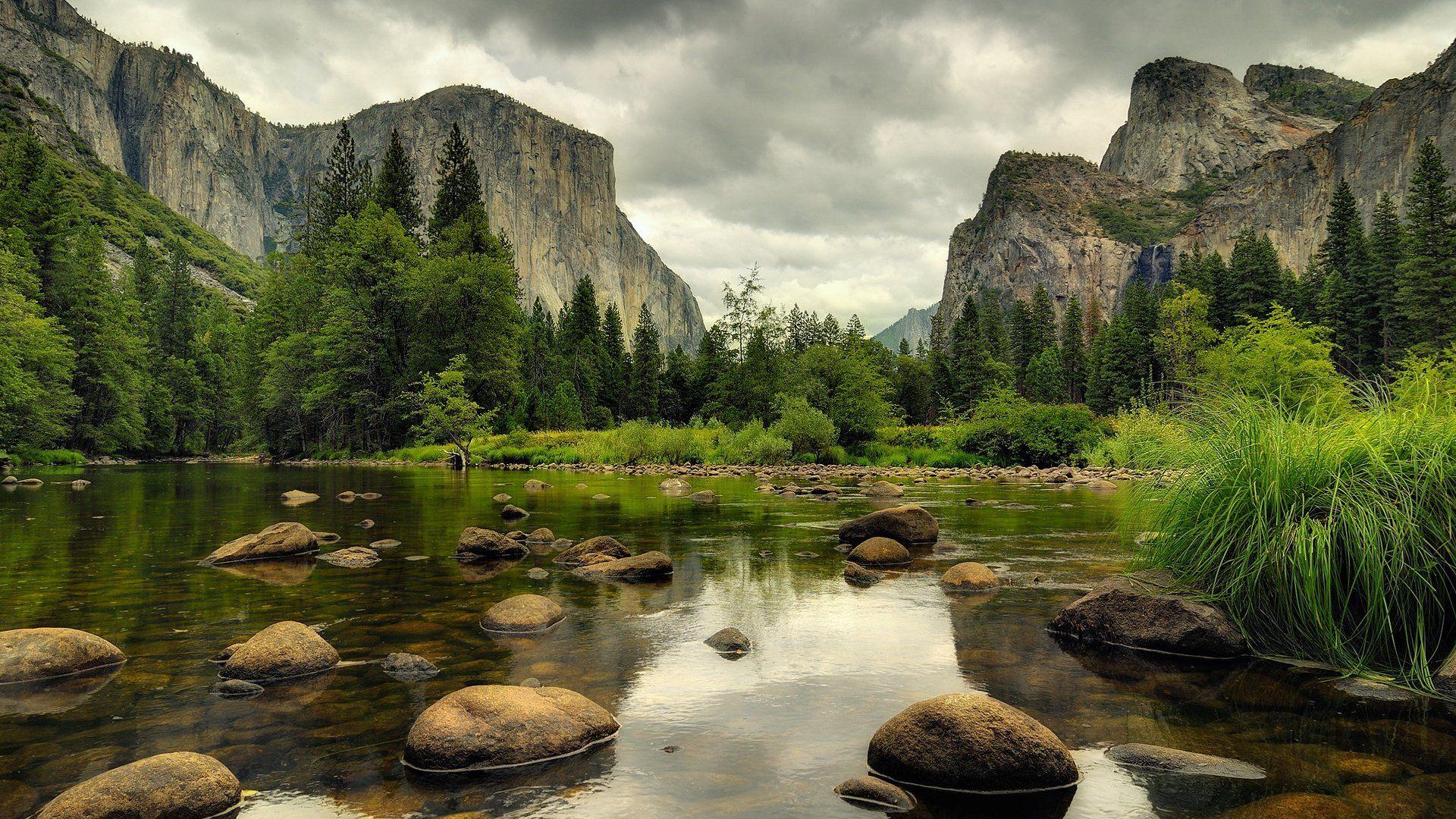 Nature Full Hd