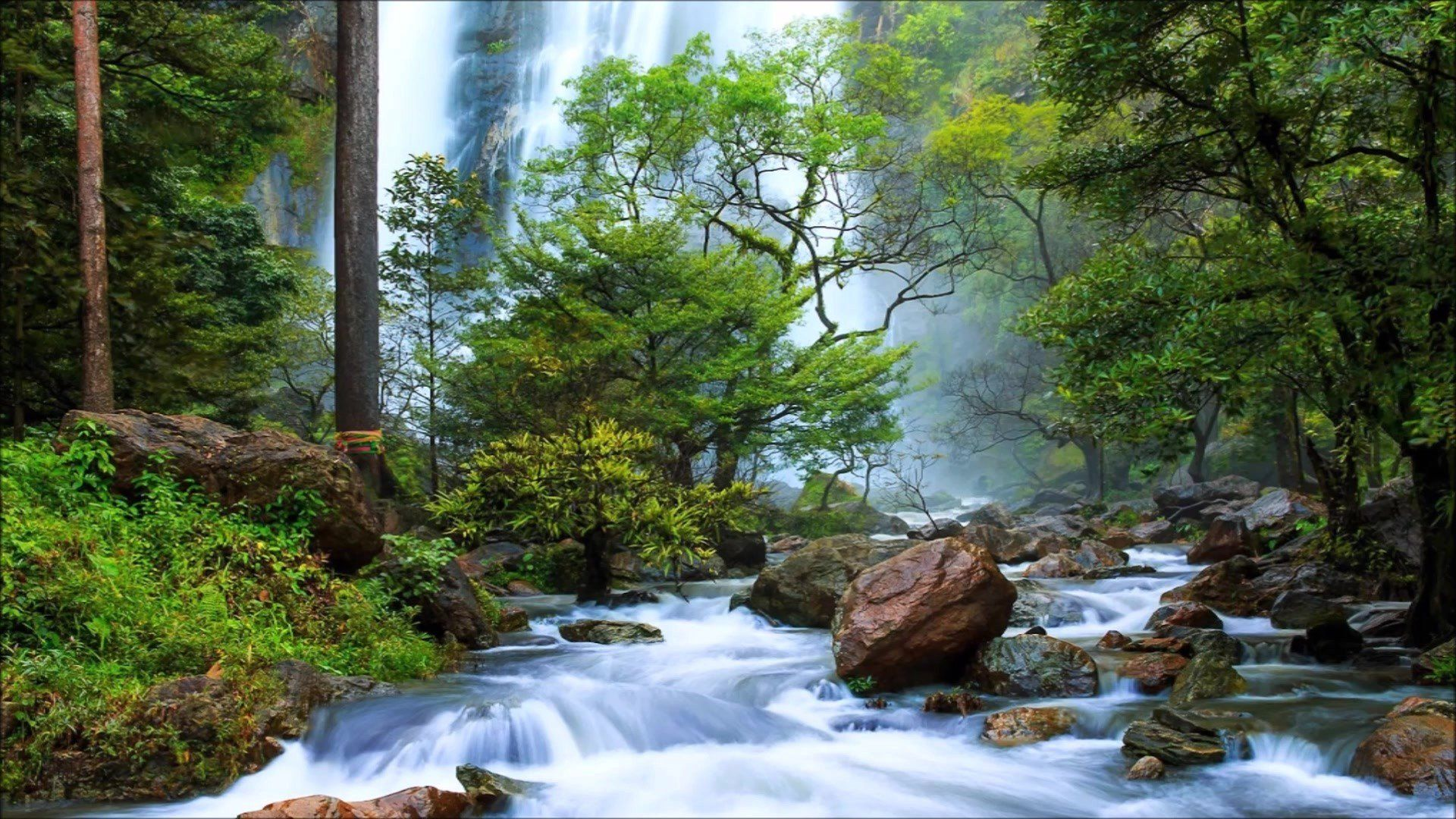 Nature Photo Waterfall In The Forest