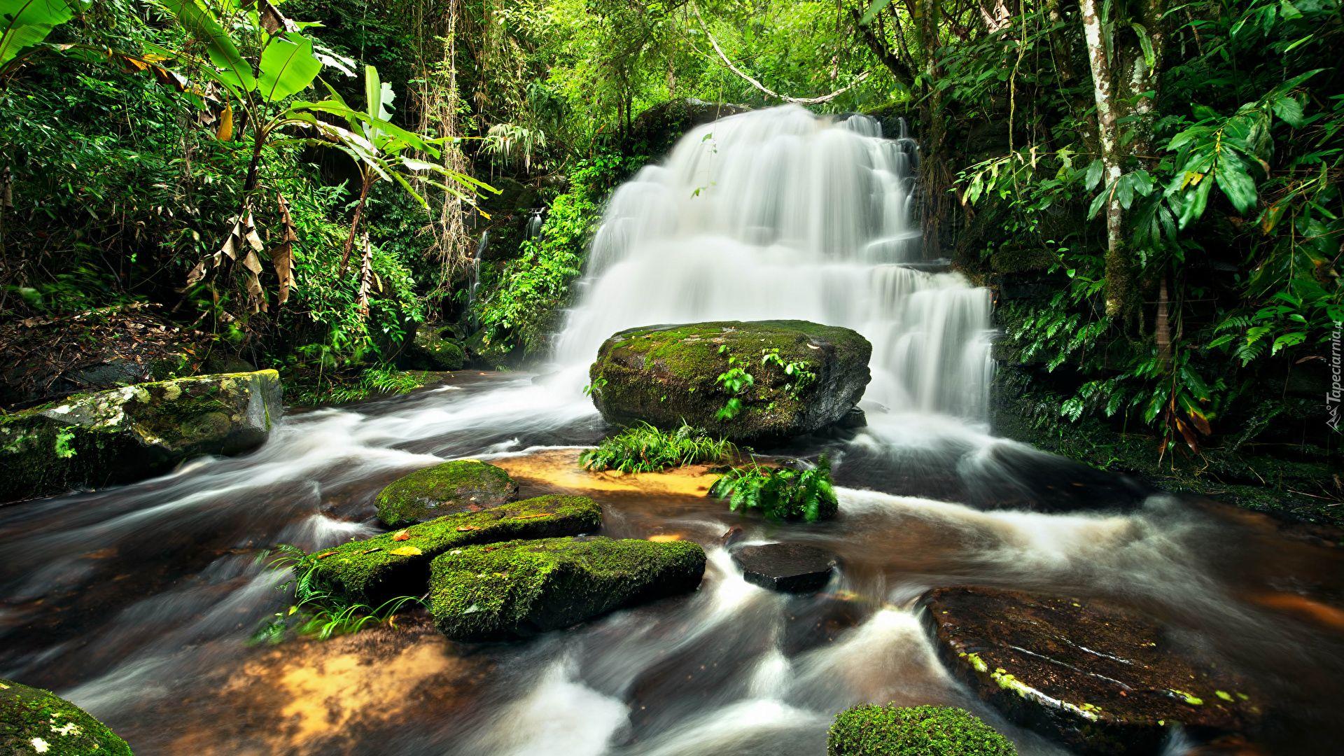 Nature Waterfalls Photos