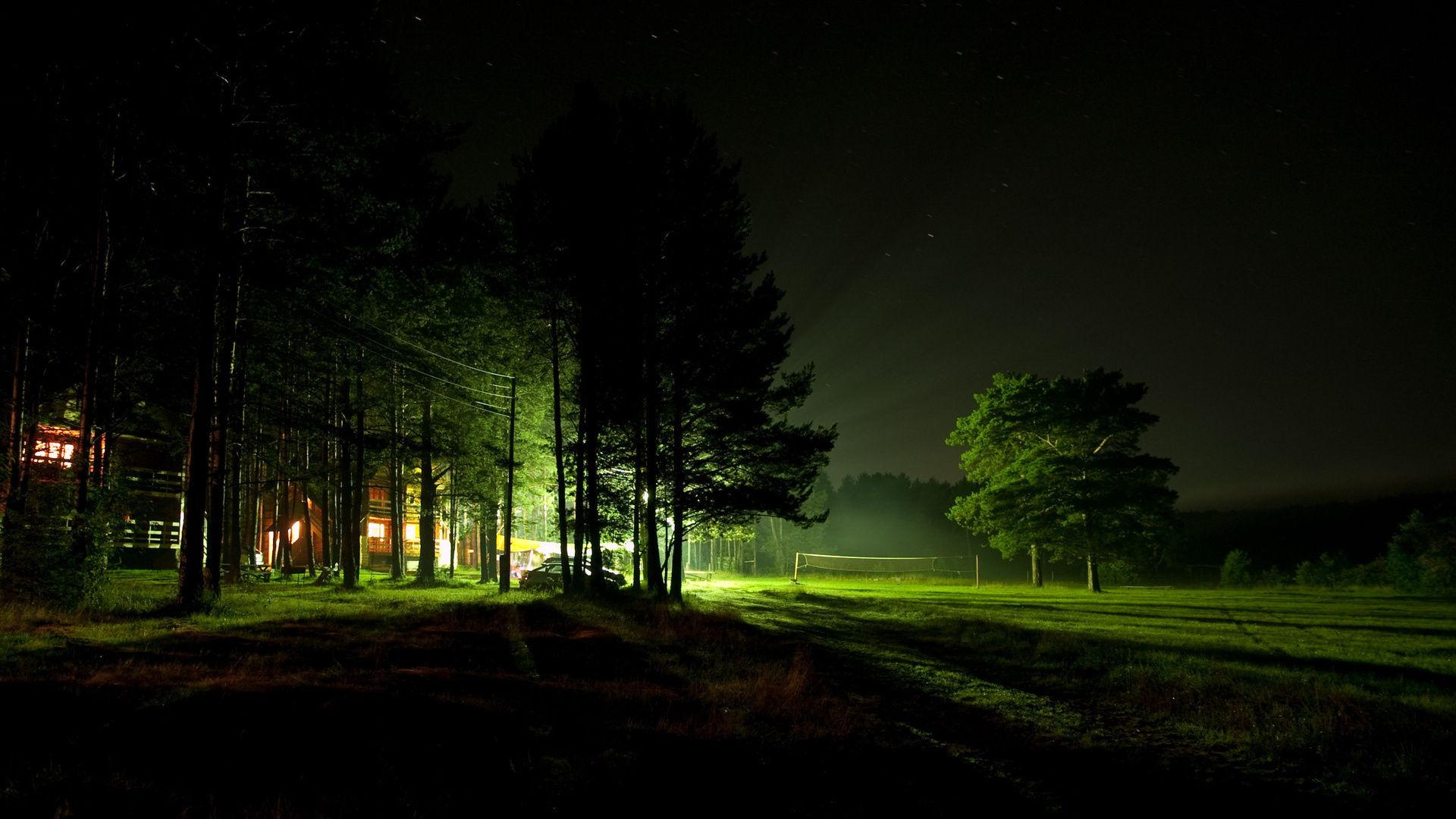 Night Forest Images