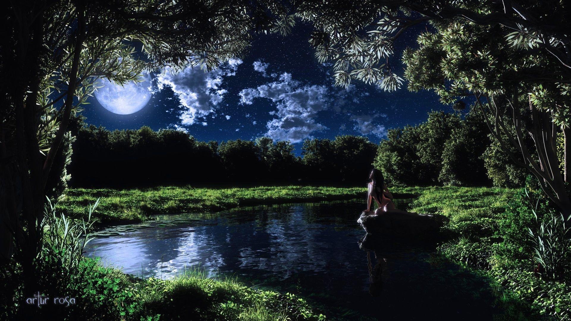 Night Lake Of The Woods