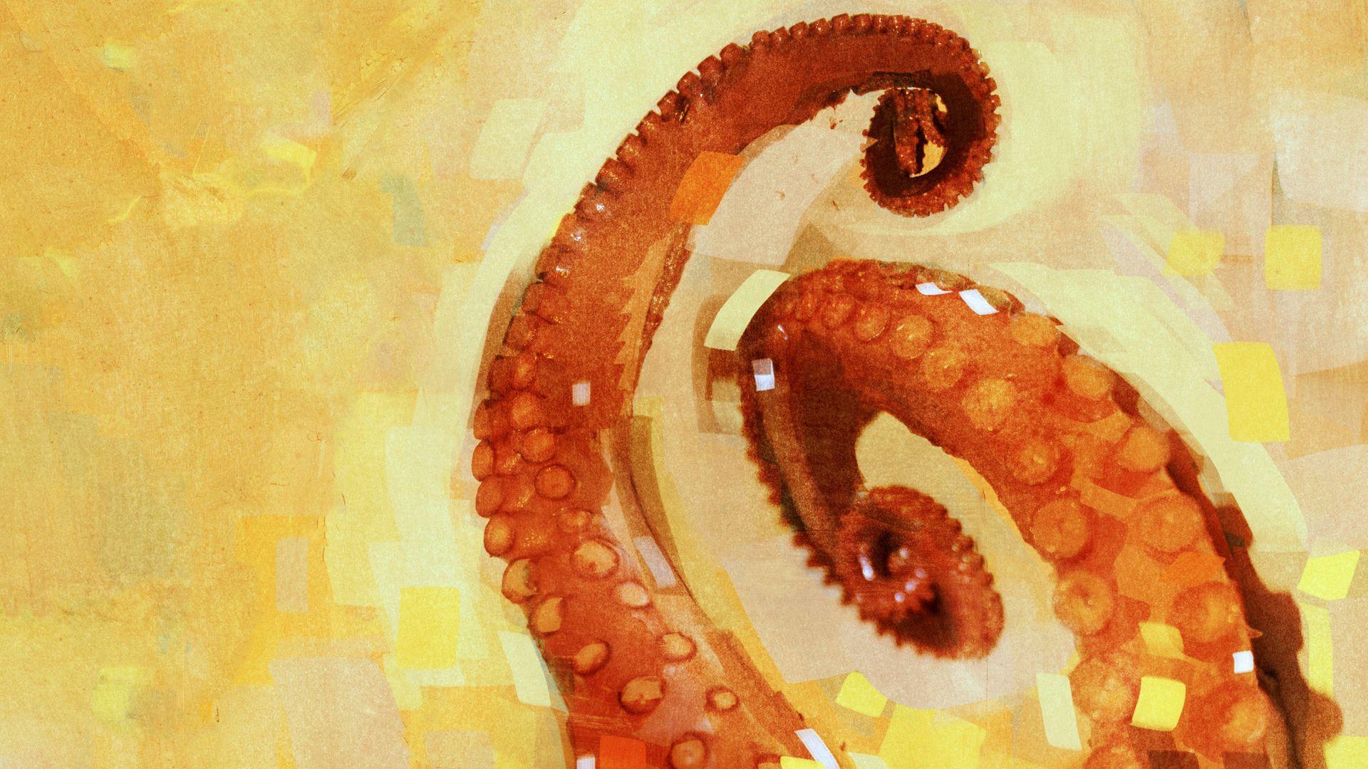 Octopus Tentacles Wallpaper