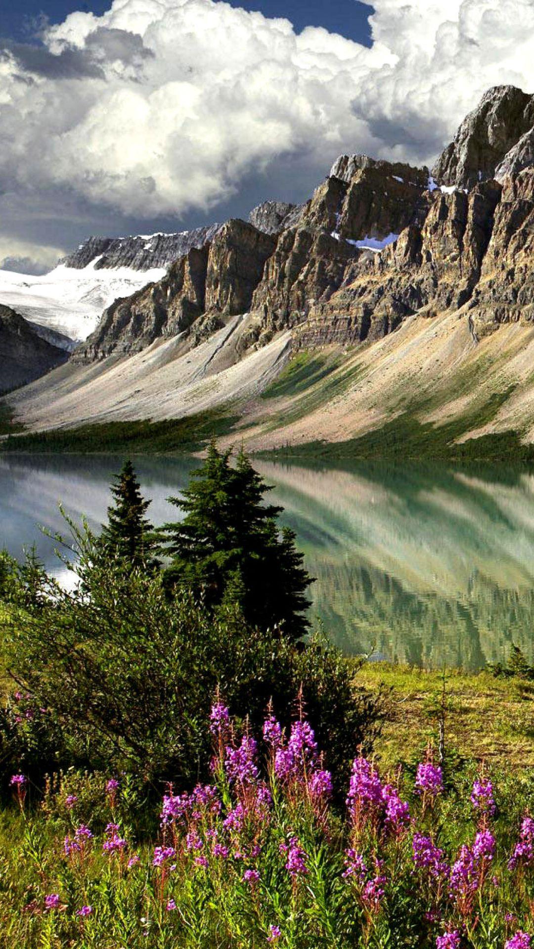Photo Mountains Lake Flowers