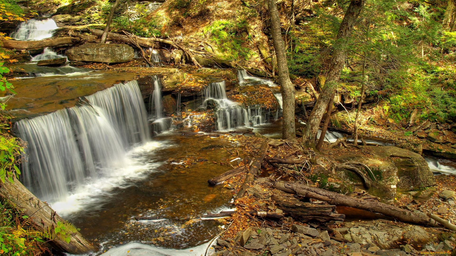 Photo Of Forest Waterfall