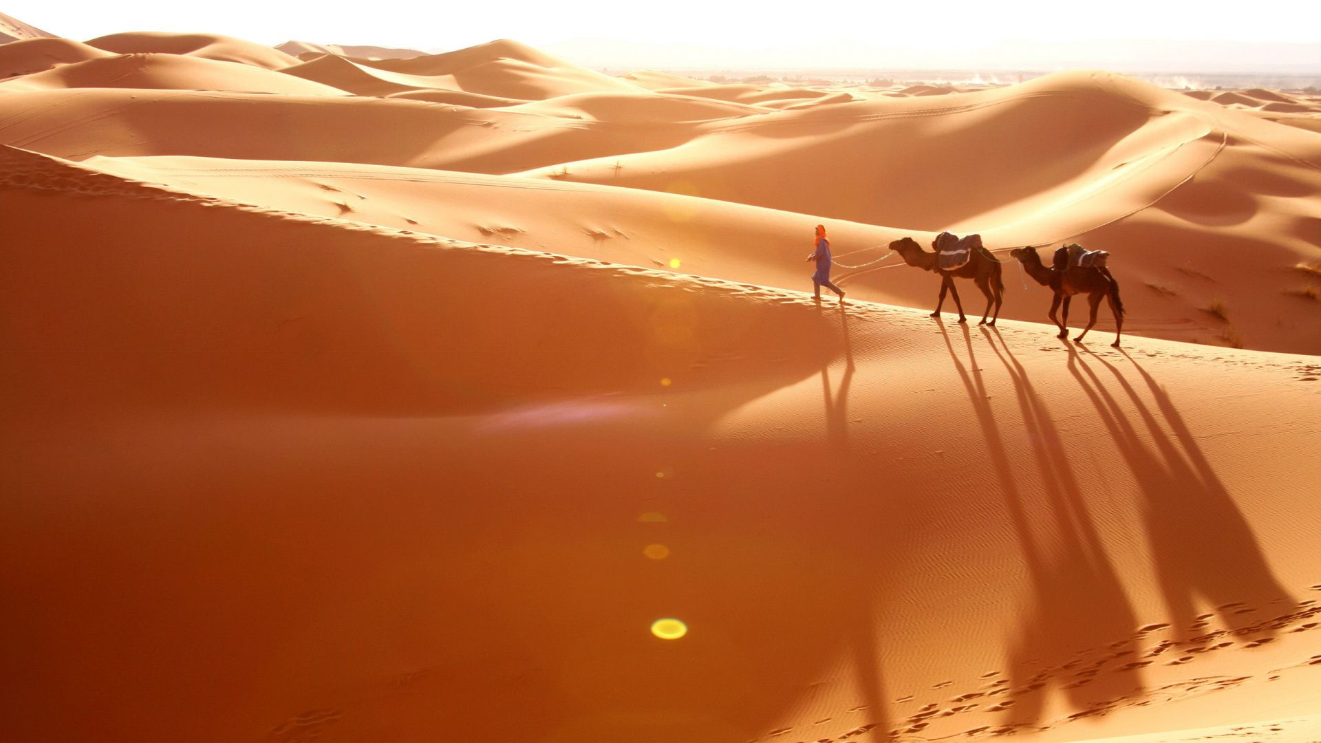 Photo Of The Desert With Camels