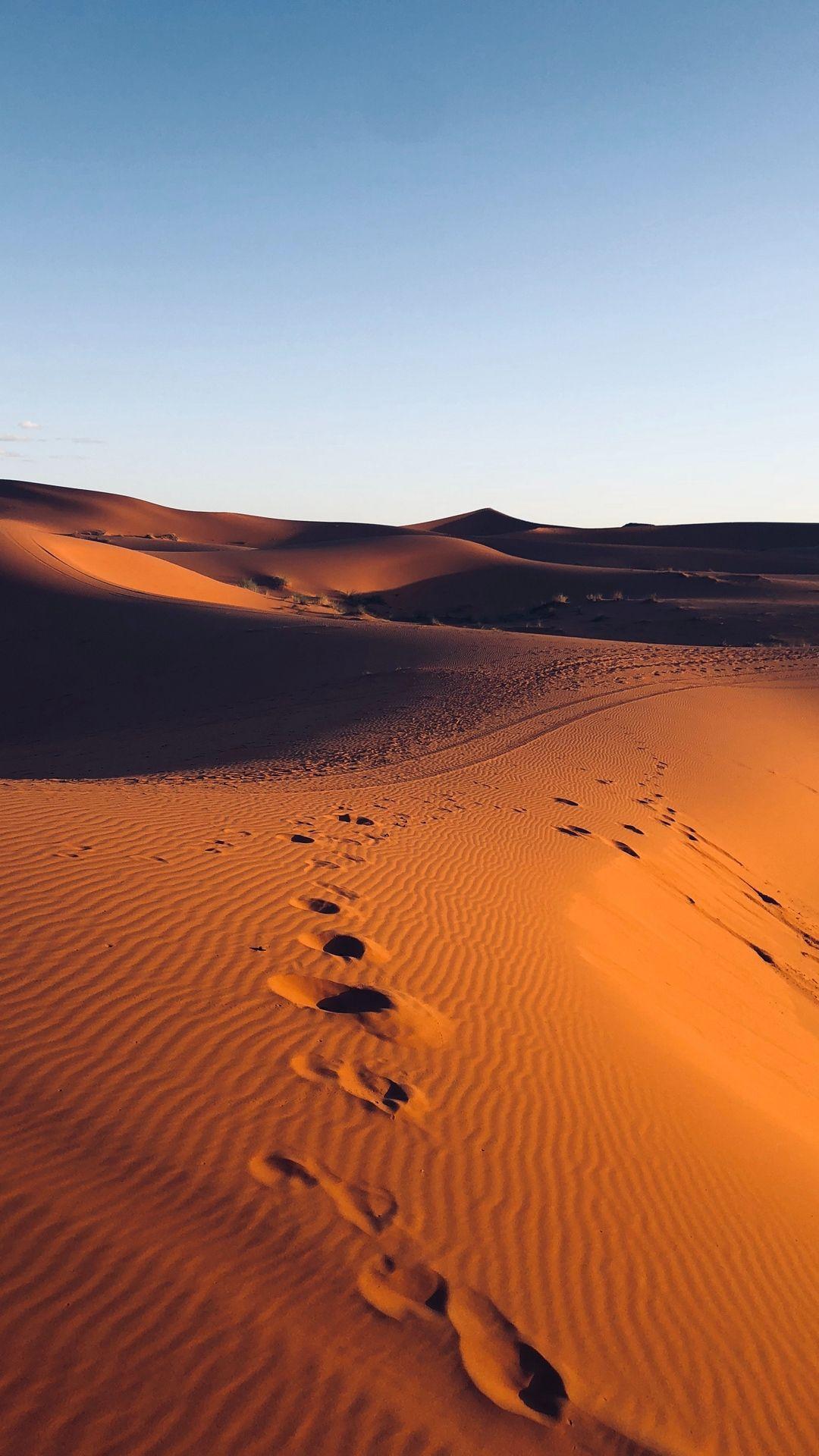 Photo Of The Desert