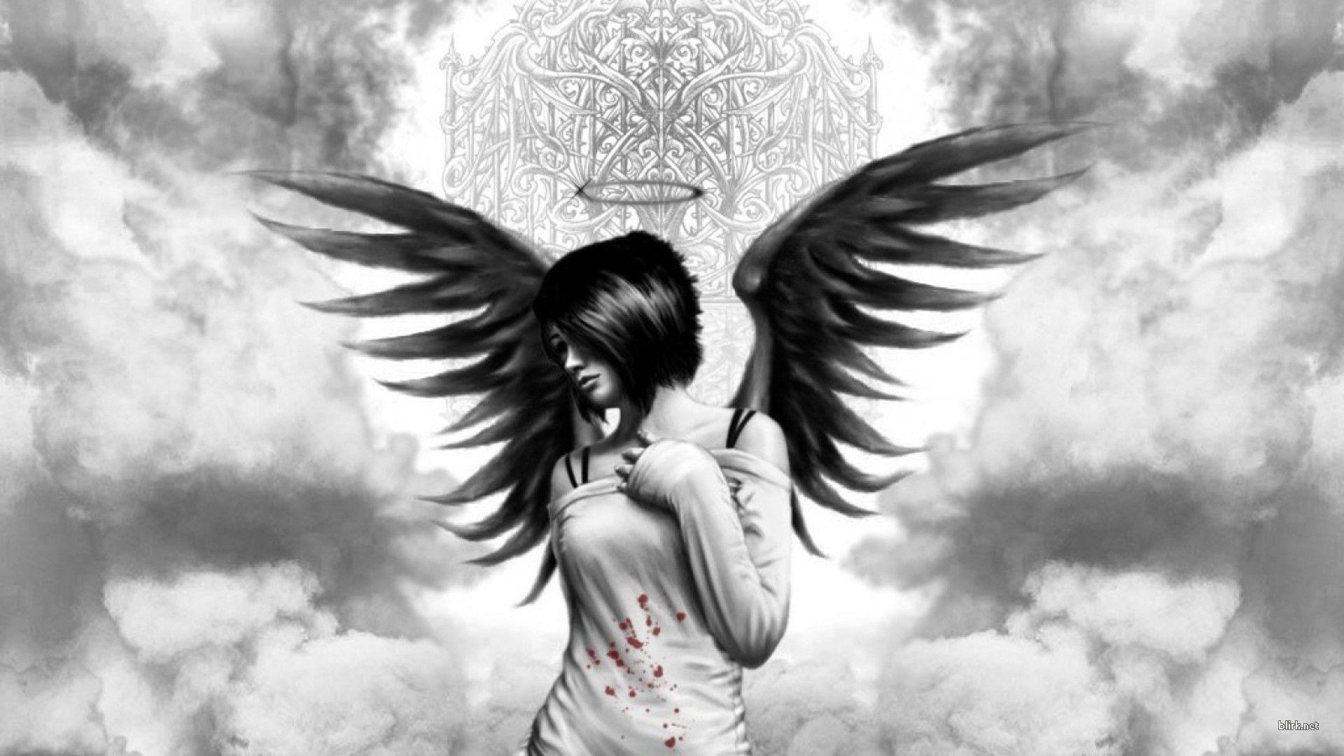 Photo On Avu Angel With Wings