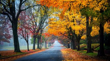 Photos Of Autumns Beautiful
