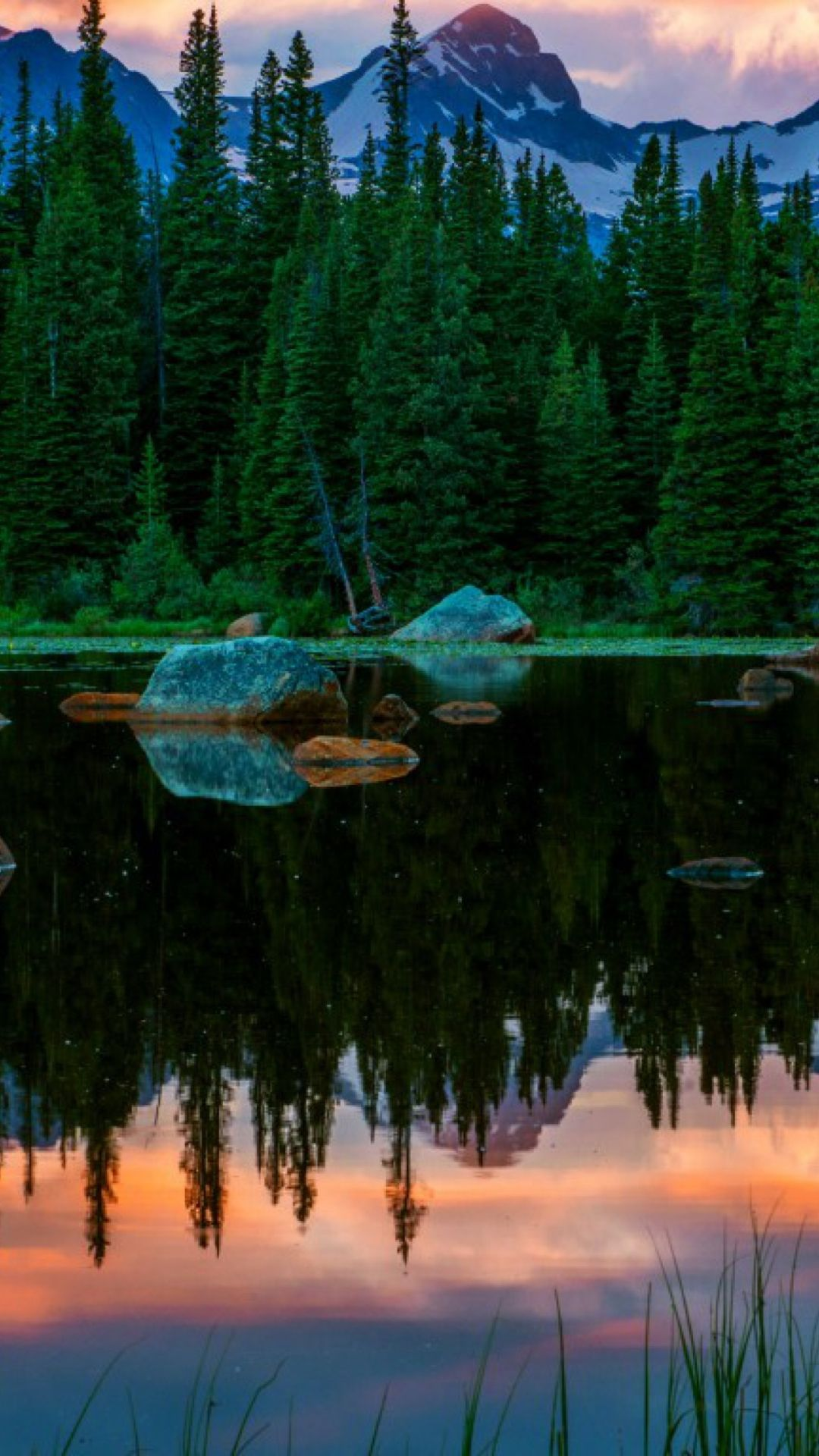 Photos To Your Smartphone A Forest With A Lake