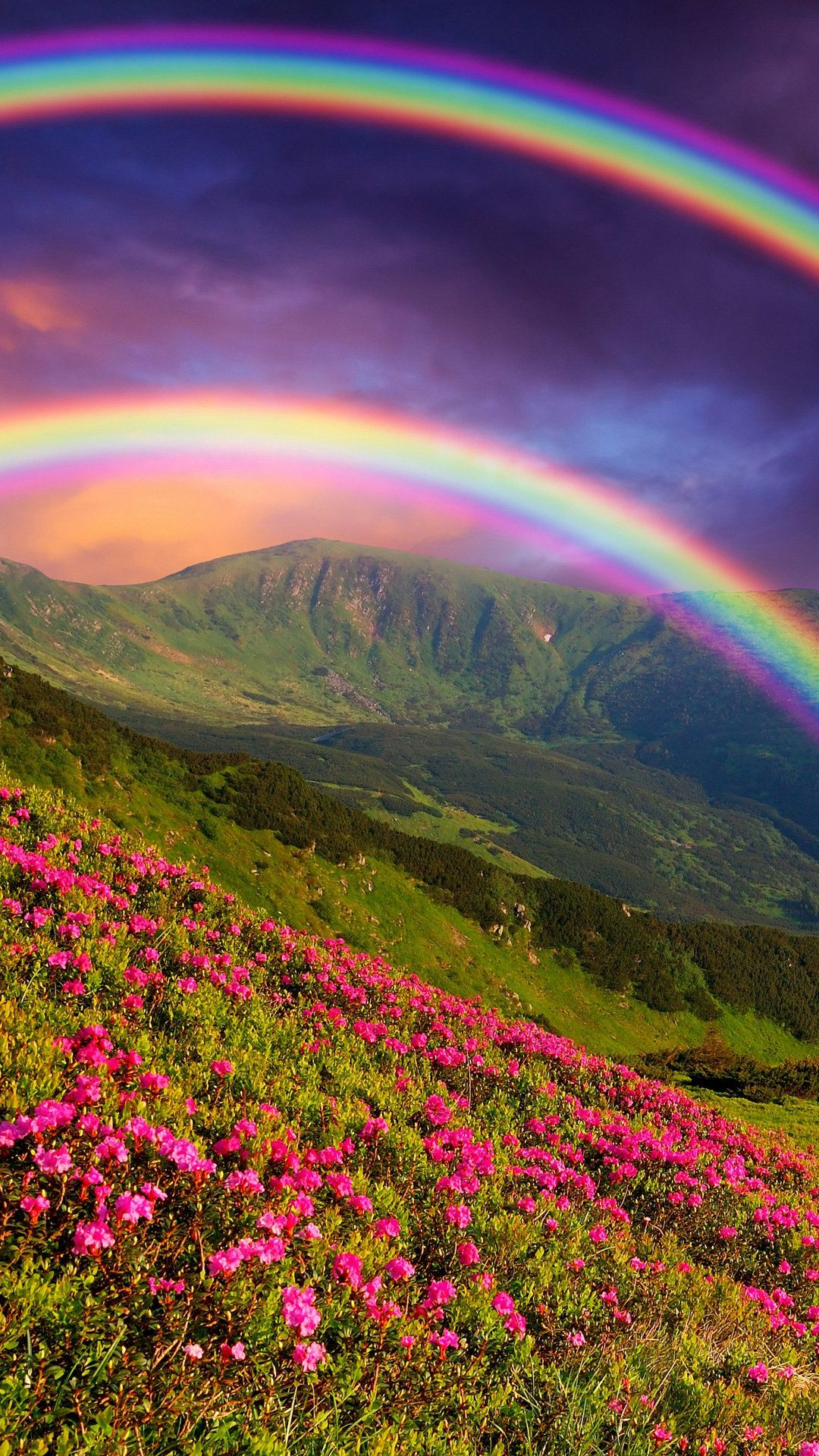 Rainbow Pictures Beautiful