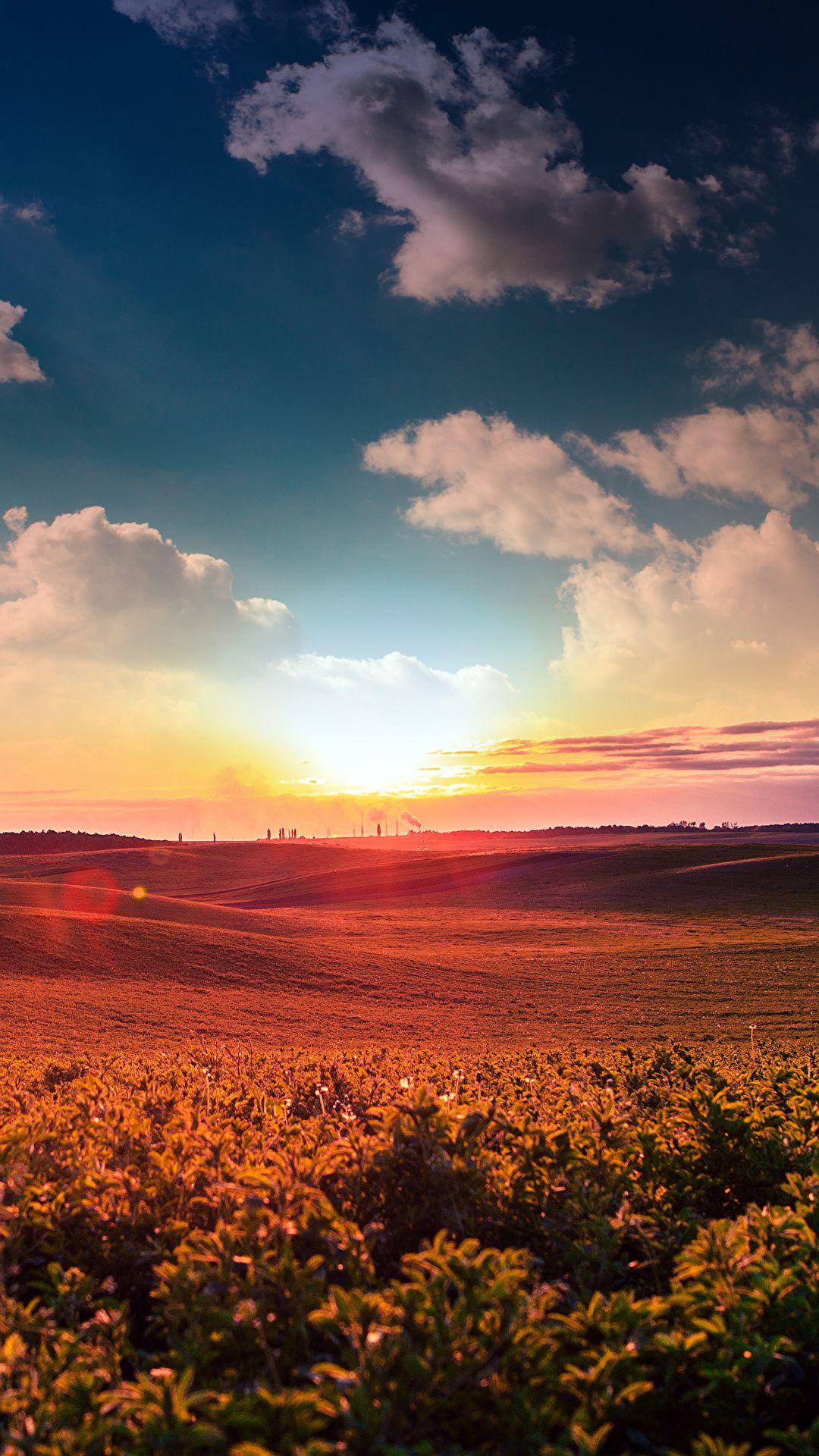Sky Dawn Field