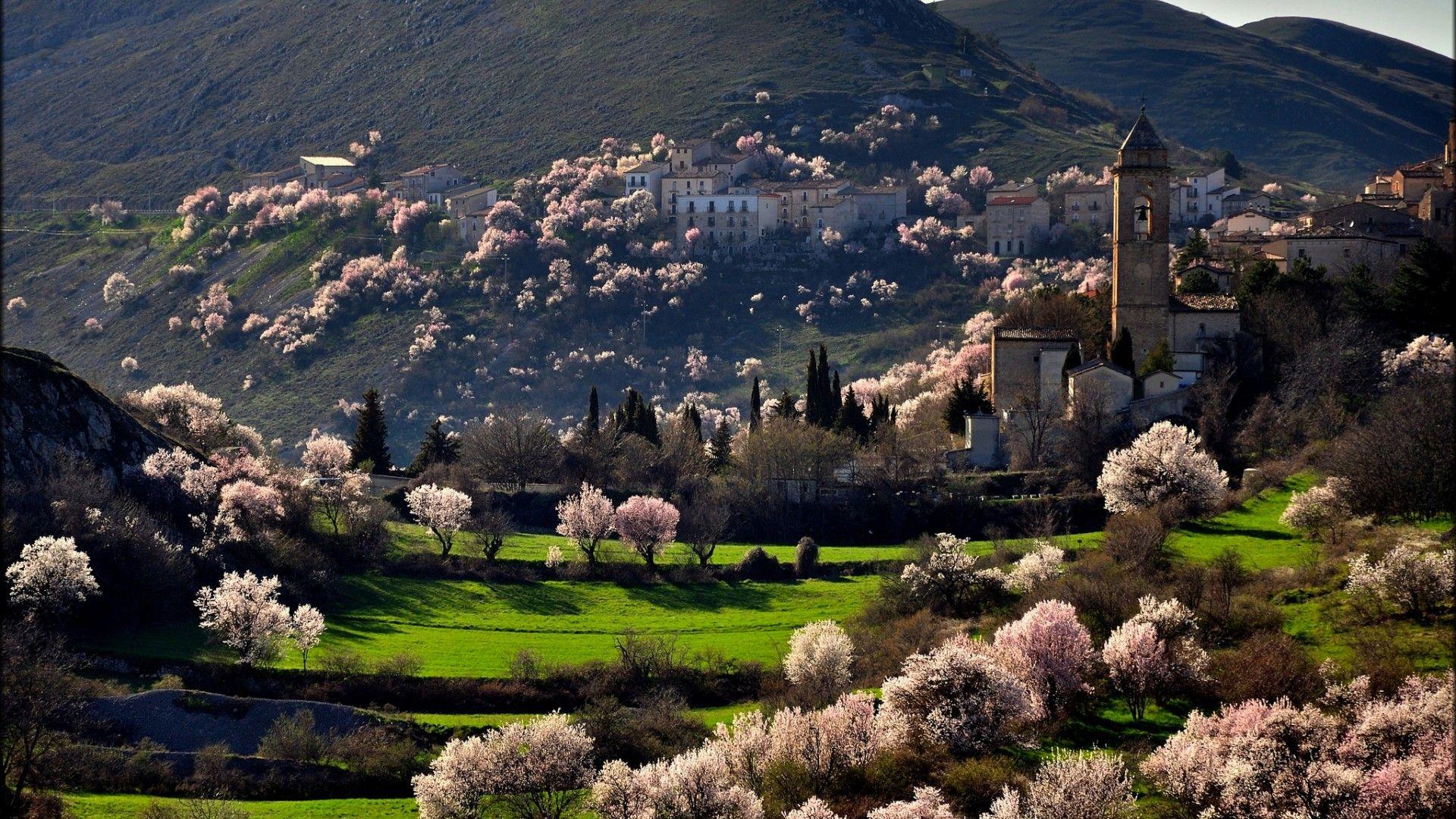 Spring In Italy Photo