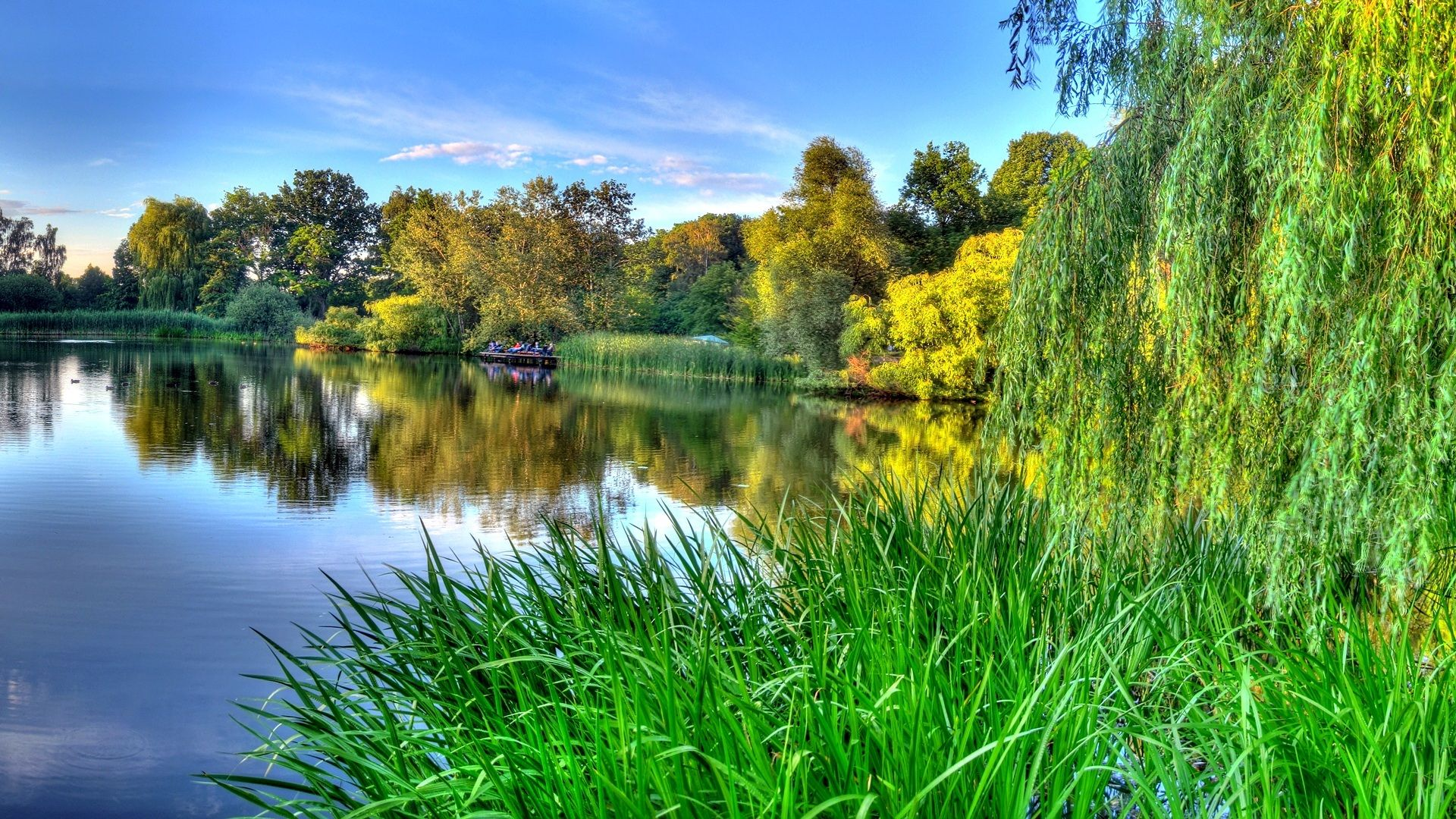 Summer Nature Forest River Lake Beautiful Pictures