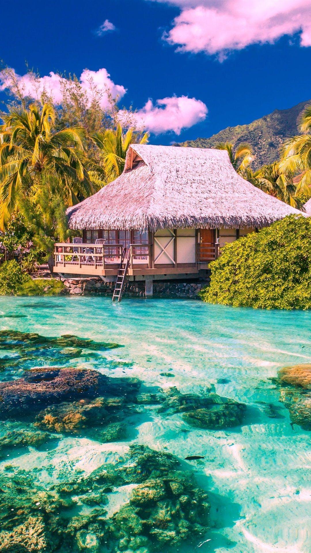 The Maldives Vertical Photo