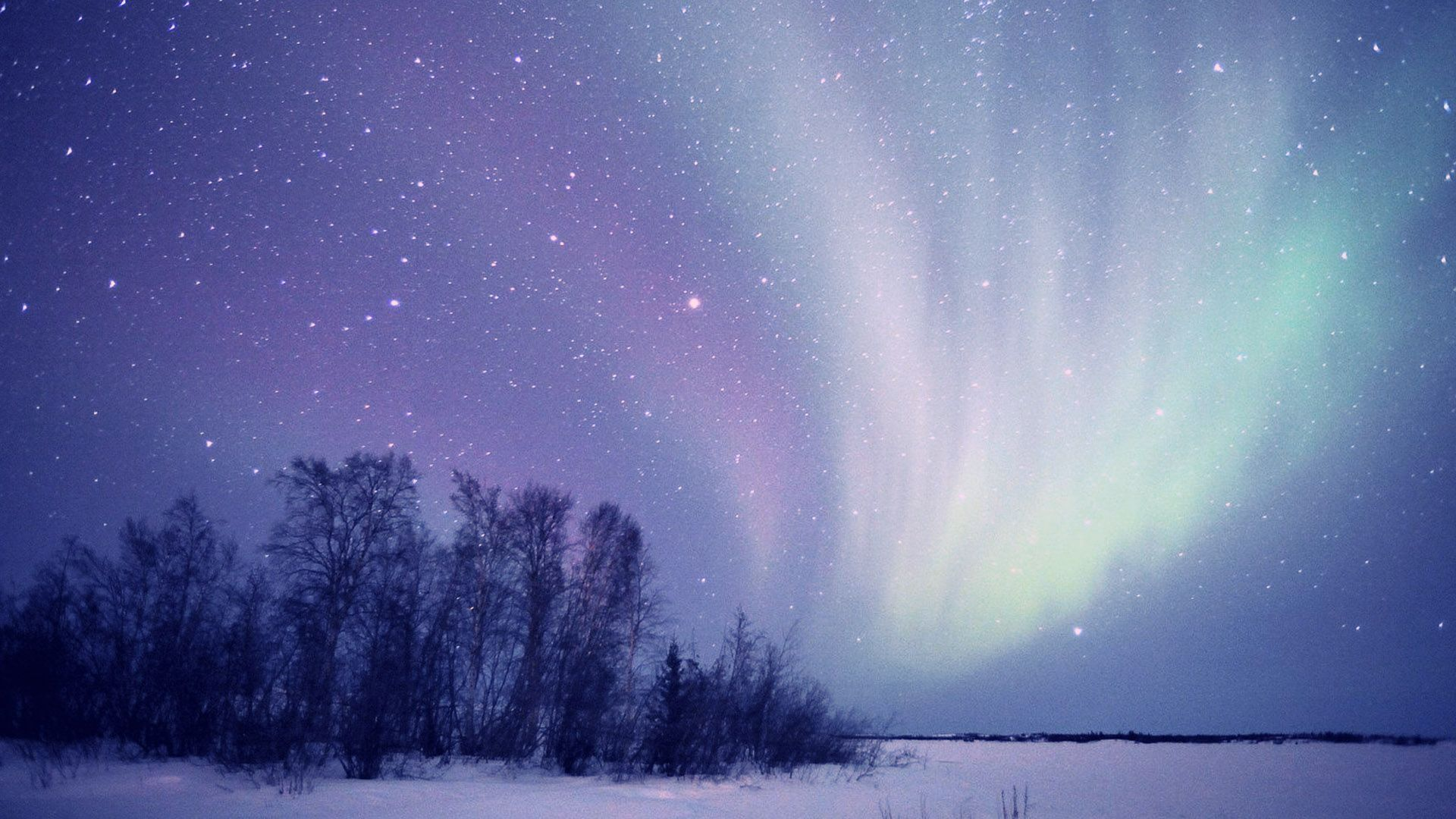The Northern Lights In Winter Photo