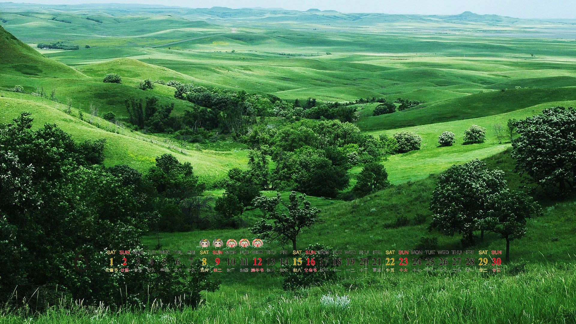 The Wallpapers Of Greenery