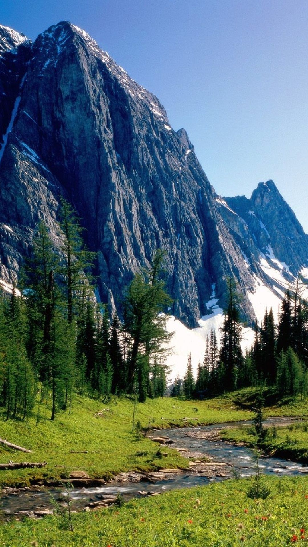 The Beauty Of The Mountains Pictures