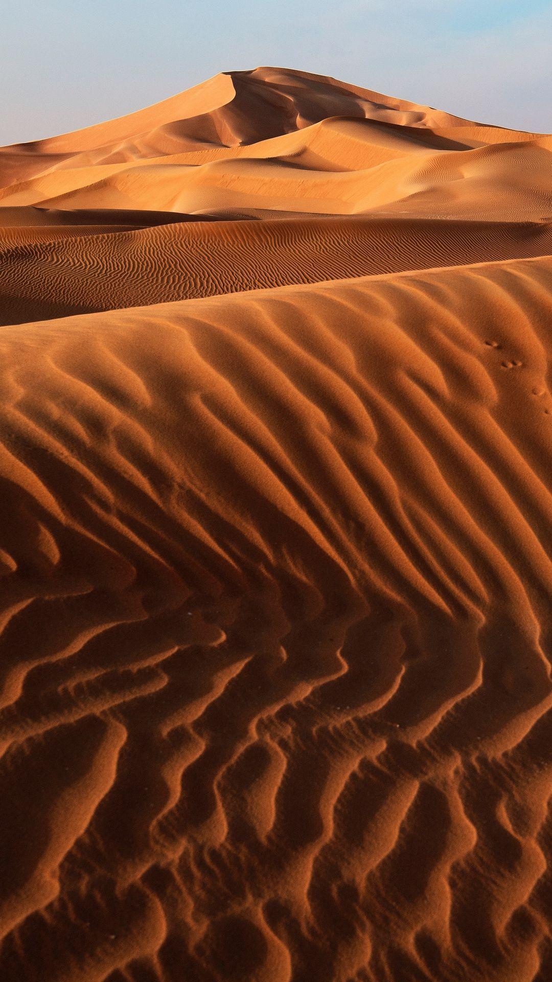 The Dunes In The Desert Photo