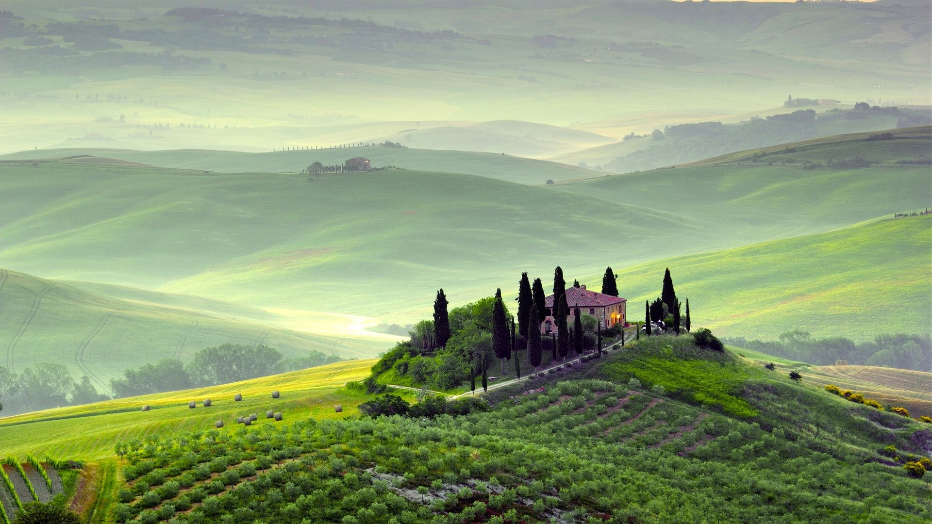 The Hills Of Tuscany