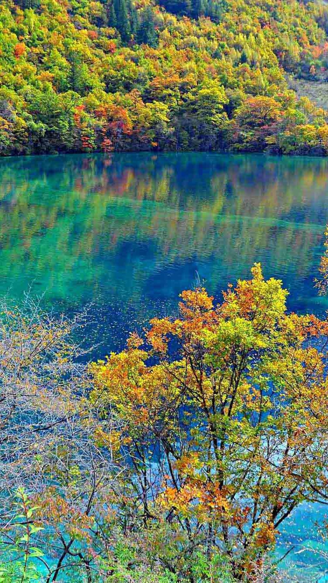 The Lake Five Colors