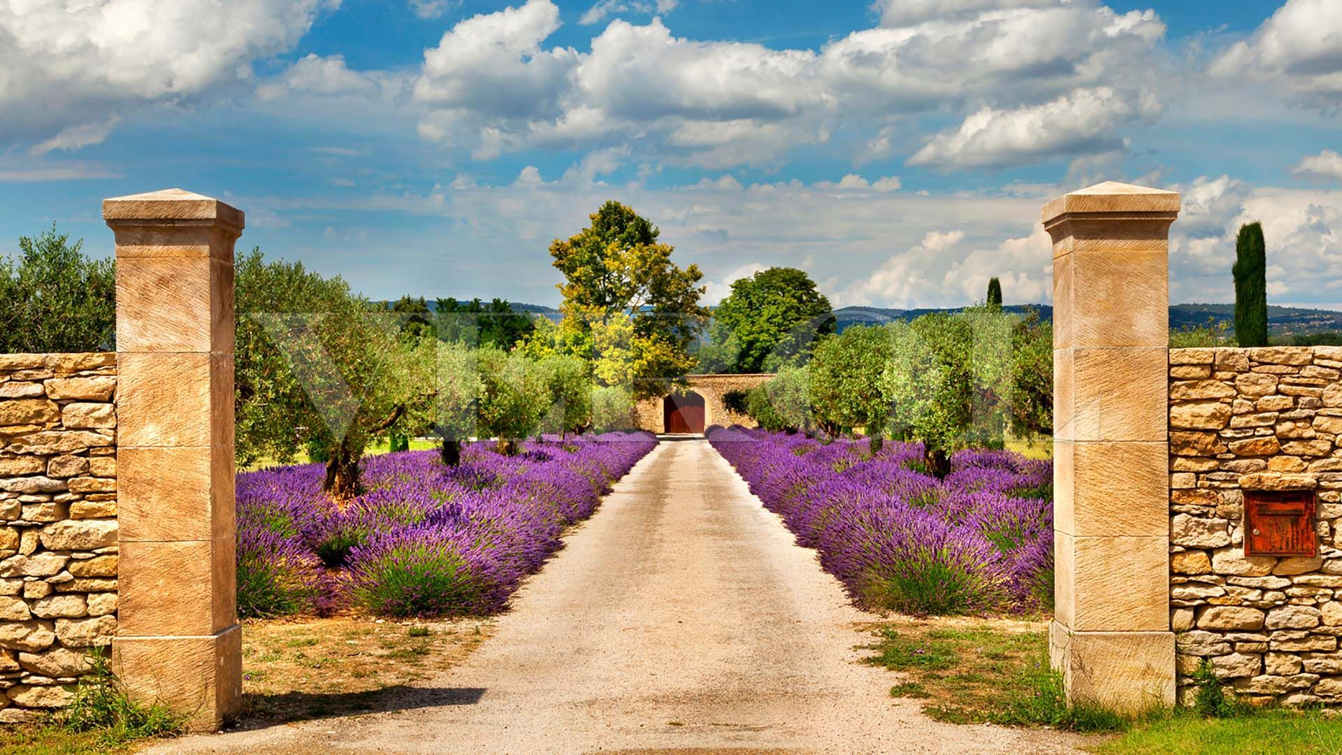 The Nature Of France Provence