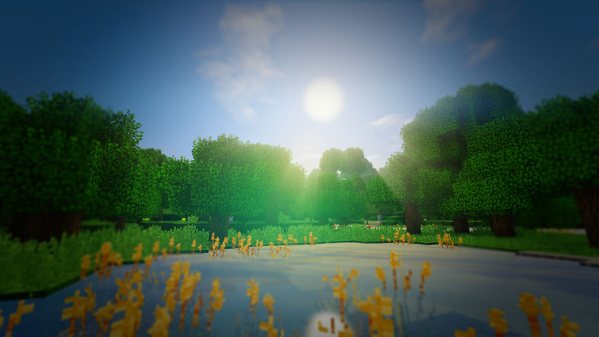 The Nature Of Minecraft With Shaders