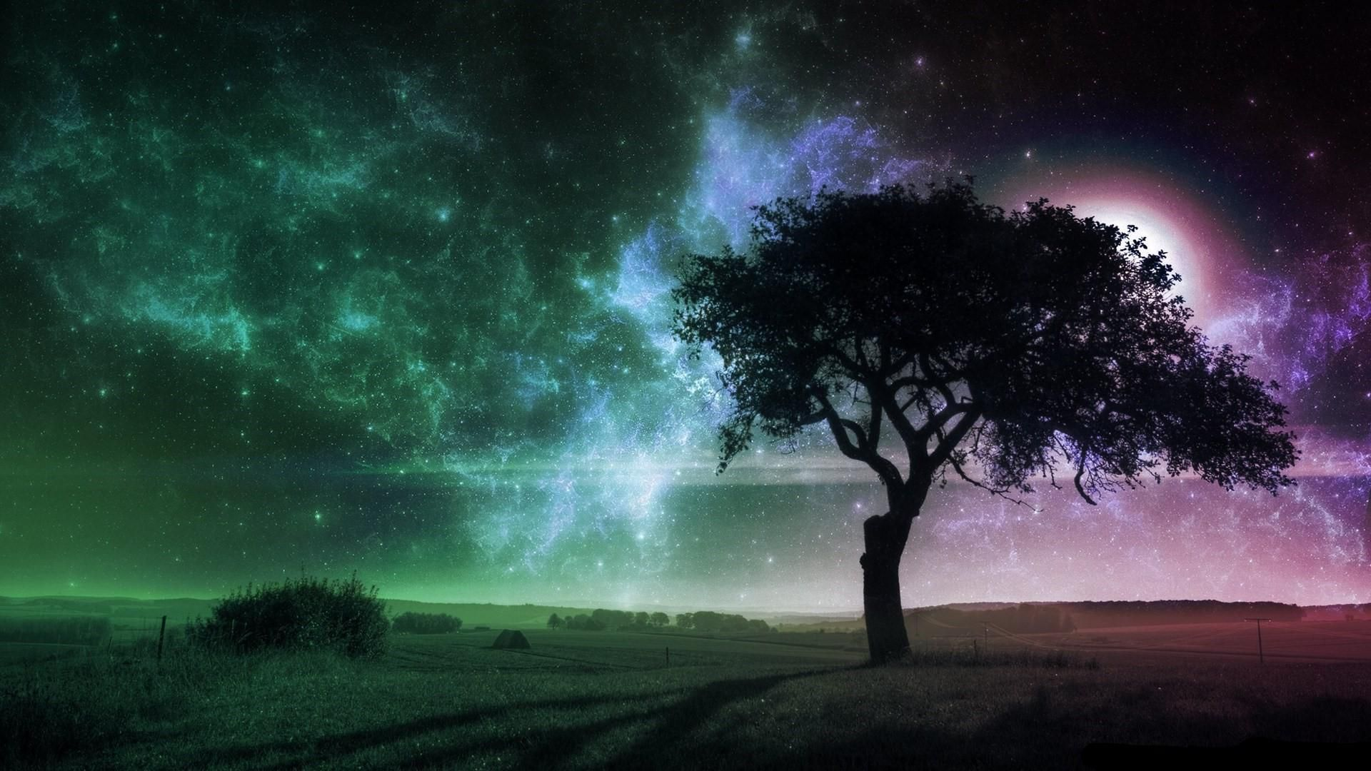 The Tree On The Background Of Space Art