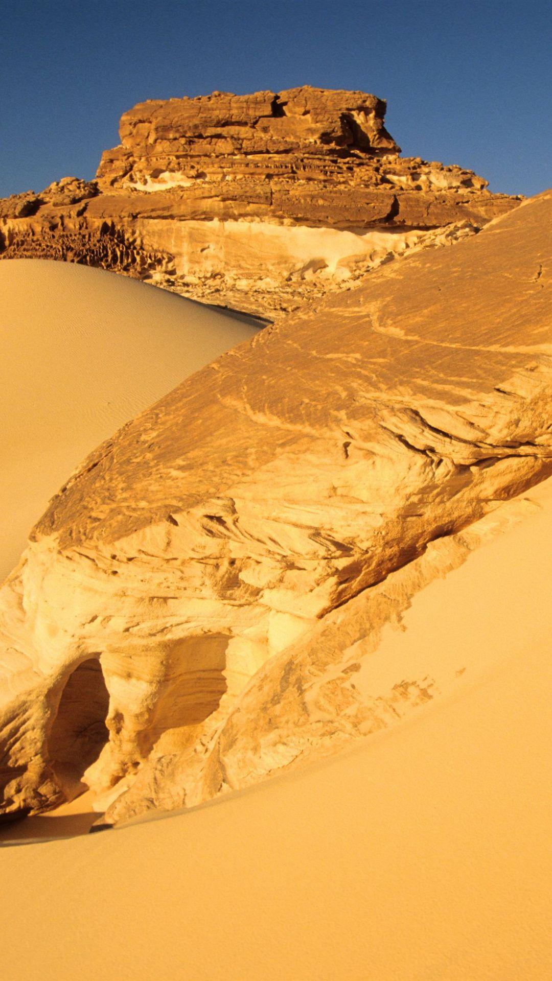 The Wilderness Of Sinai