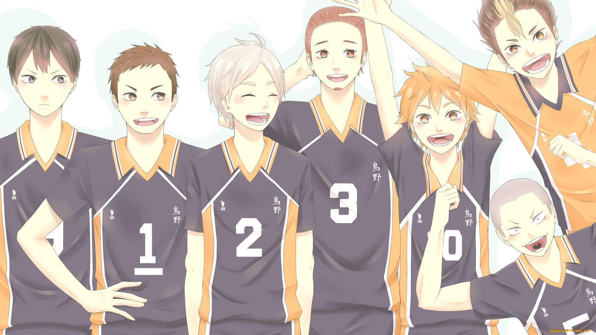 Volleyball Team Karasuma Haikyuu!!