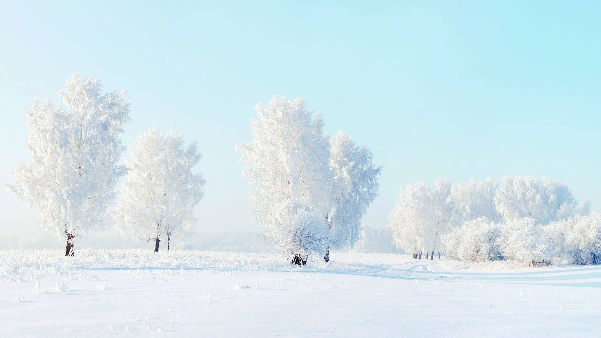Winter Landscape 2