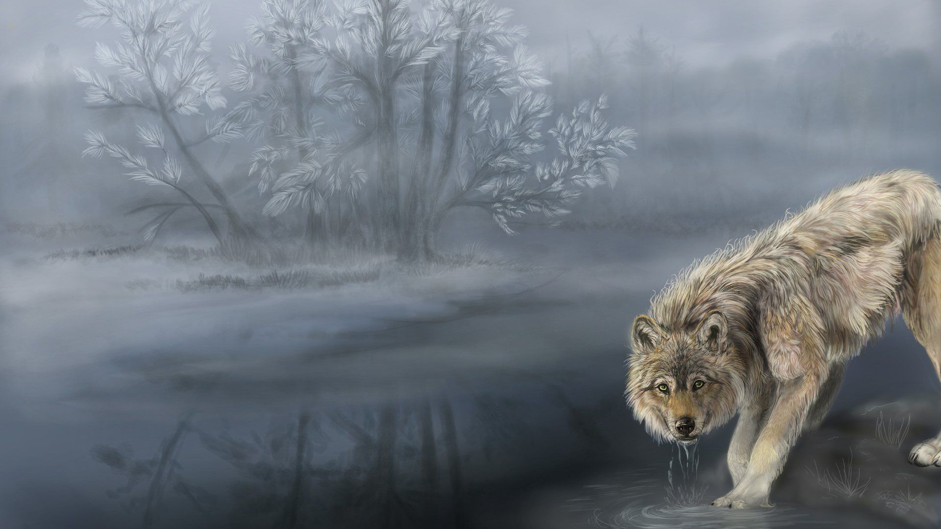 Wolf In The Fog Art