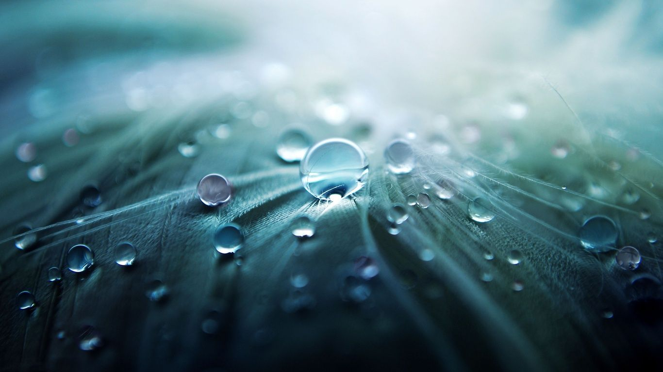 Beautiful Water Drop