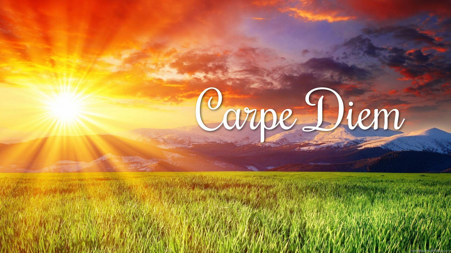 Carpe Diem laptop background wallpaper
