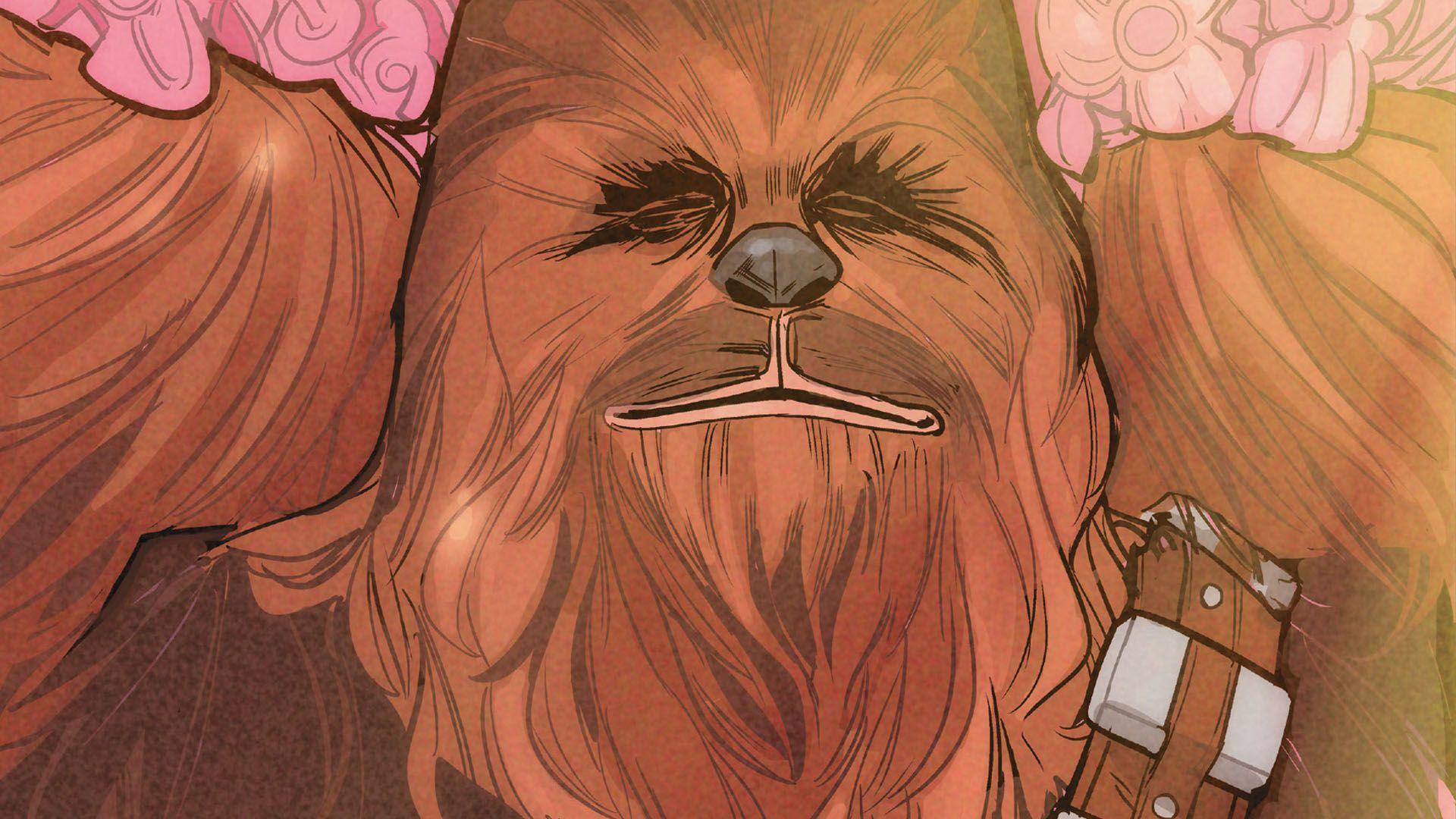 Chewbacca picture hd