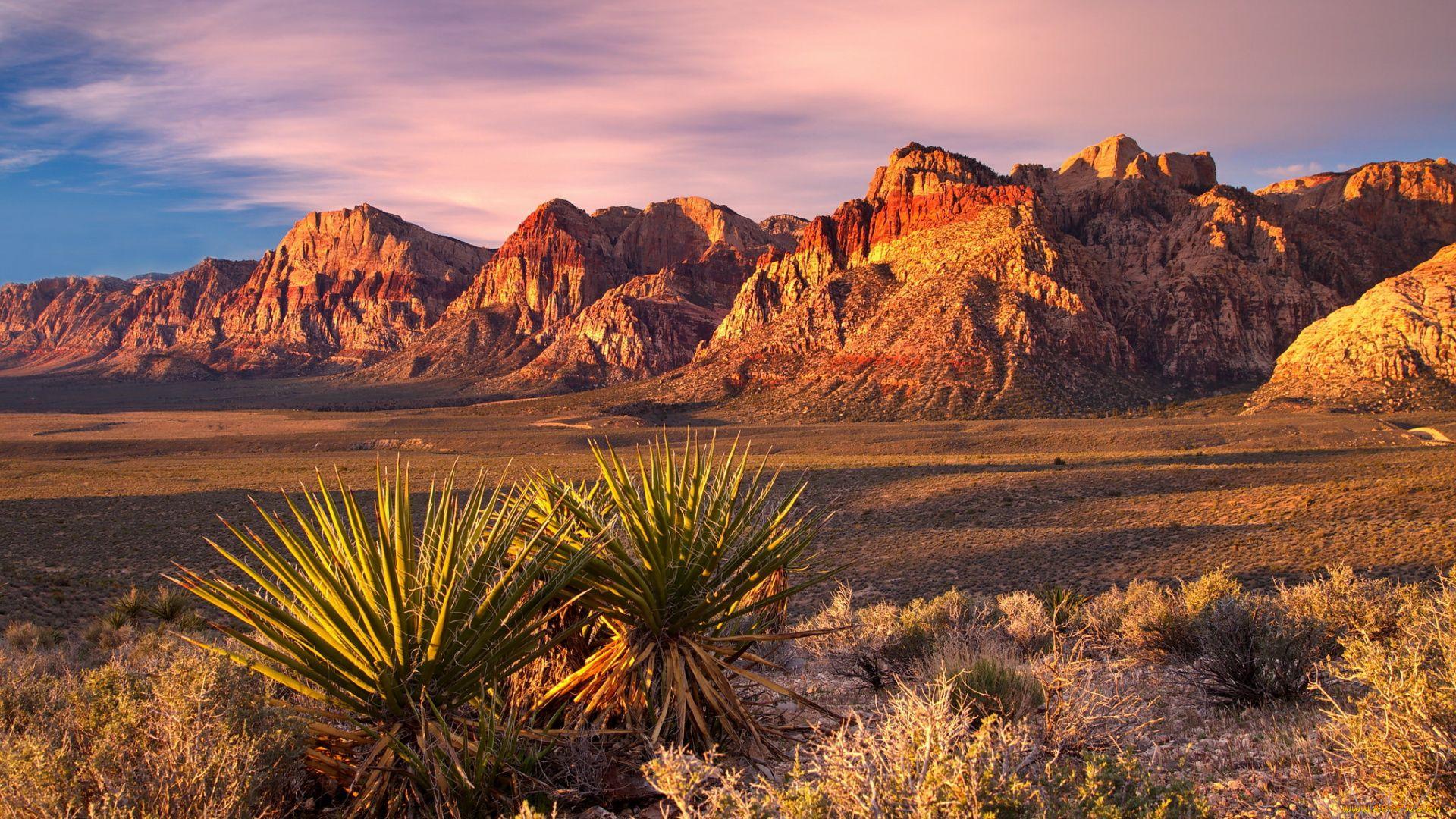 Desert Foothills Landscape wallpaper pc