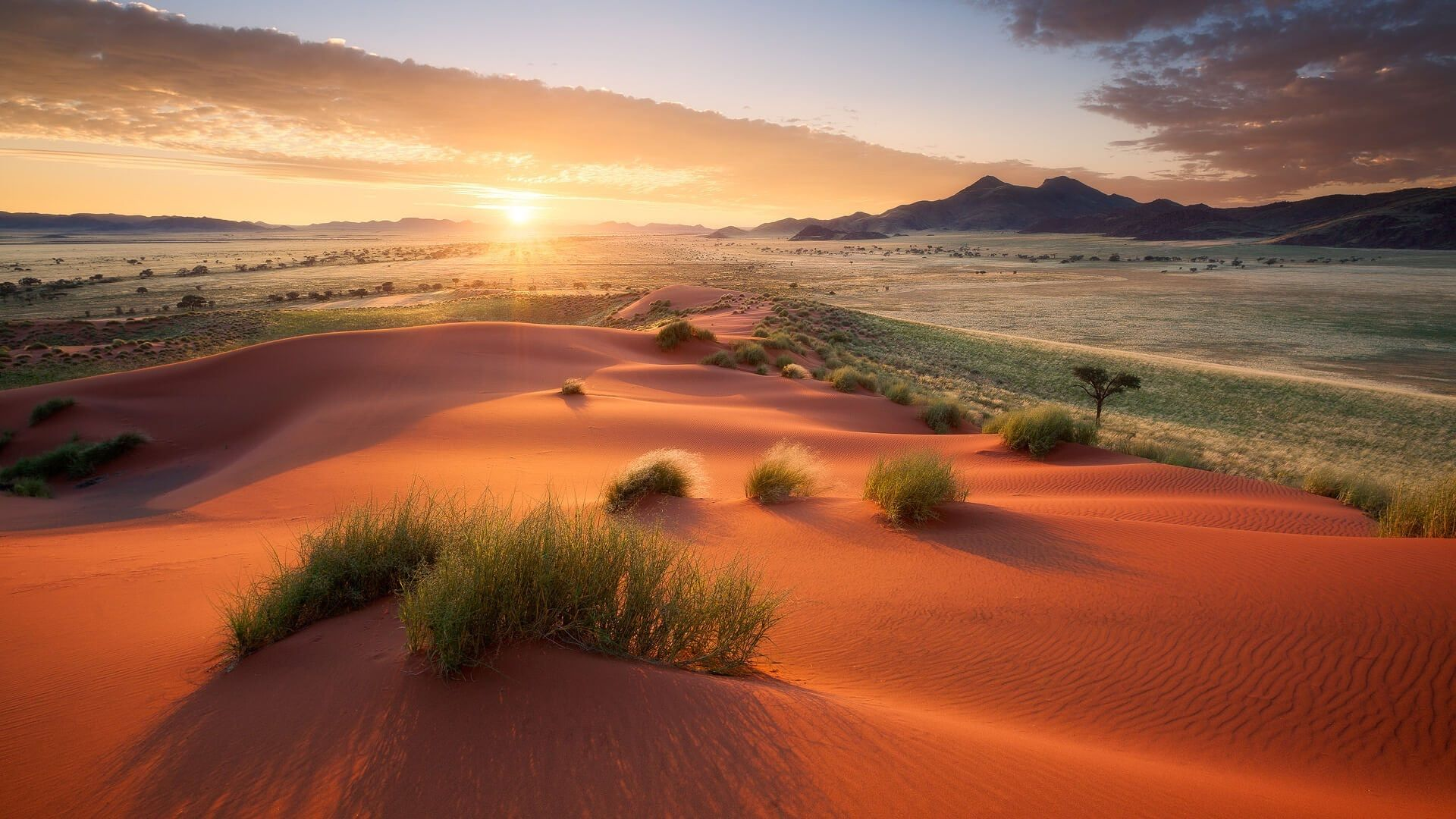 Desert Foothills Landscape wallpaper free